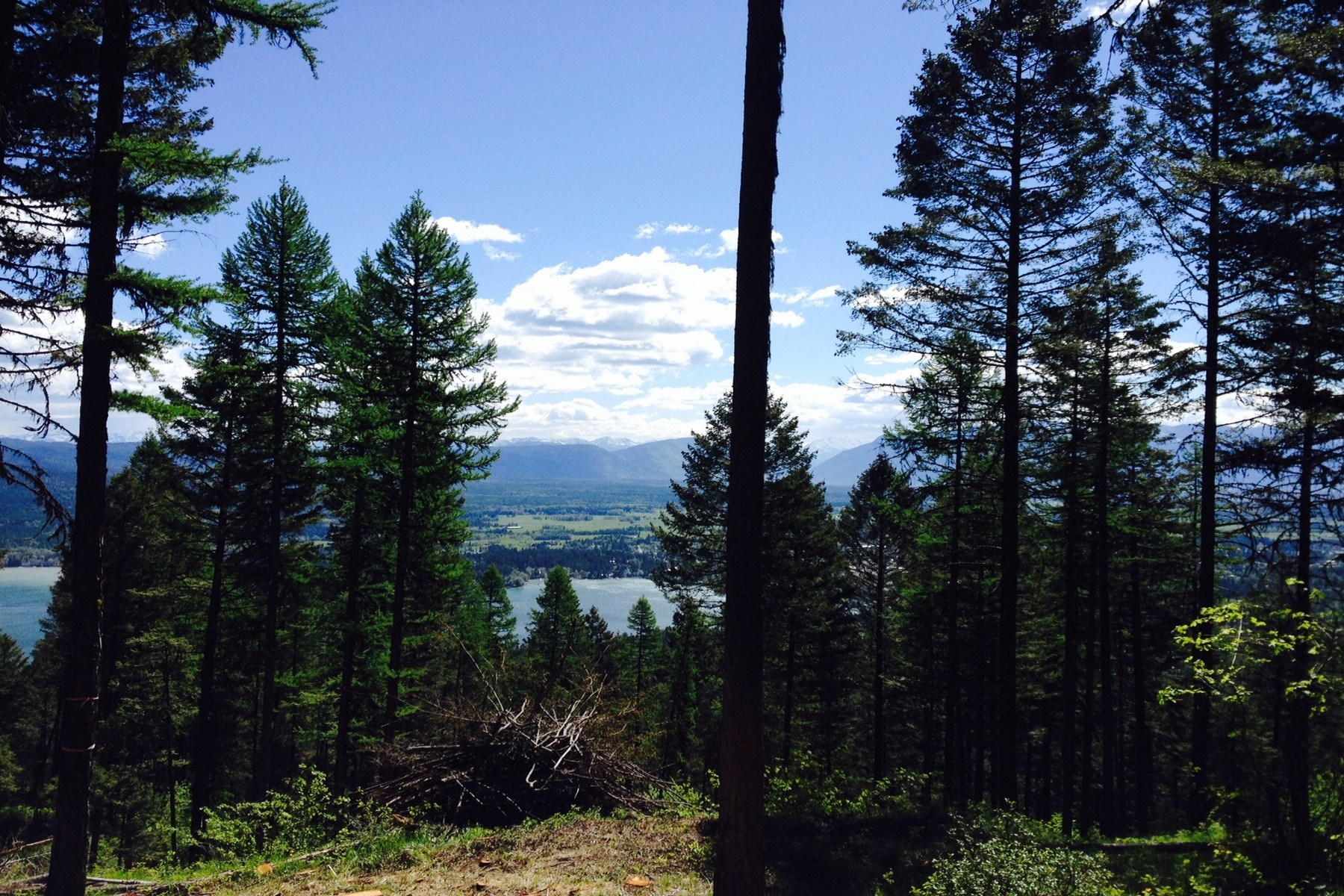 Land for Sale at 2475 Wolf Tail Pines Rd , Whitefish, MT 59937 2475 Wolf Tail Pines Rd Whitefish, Montana 59937 United States