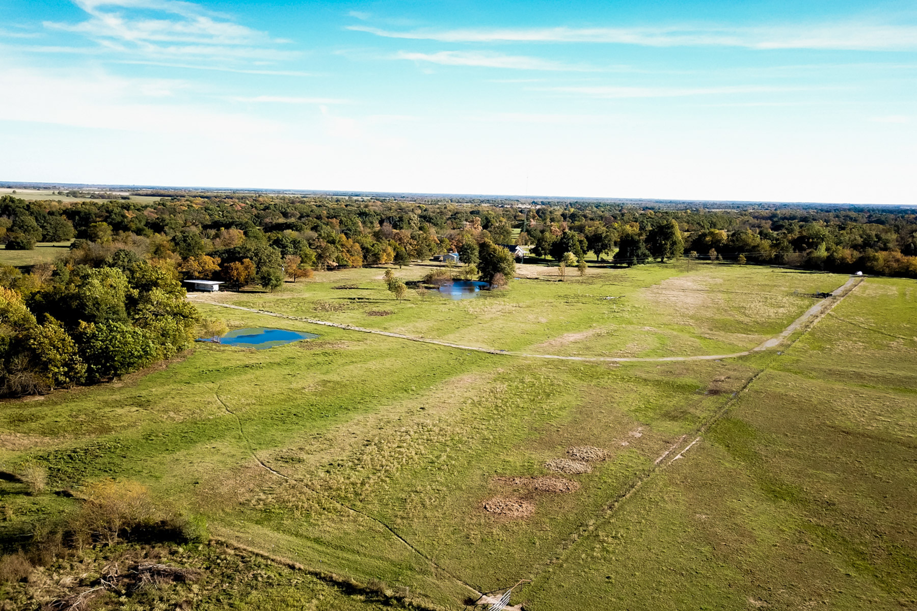Land for Sale at 19 Acres ! 1508 County Road 4719 Wolfe City, Texas 75496 United States