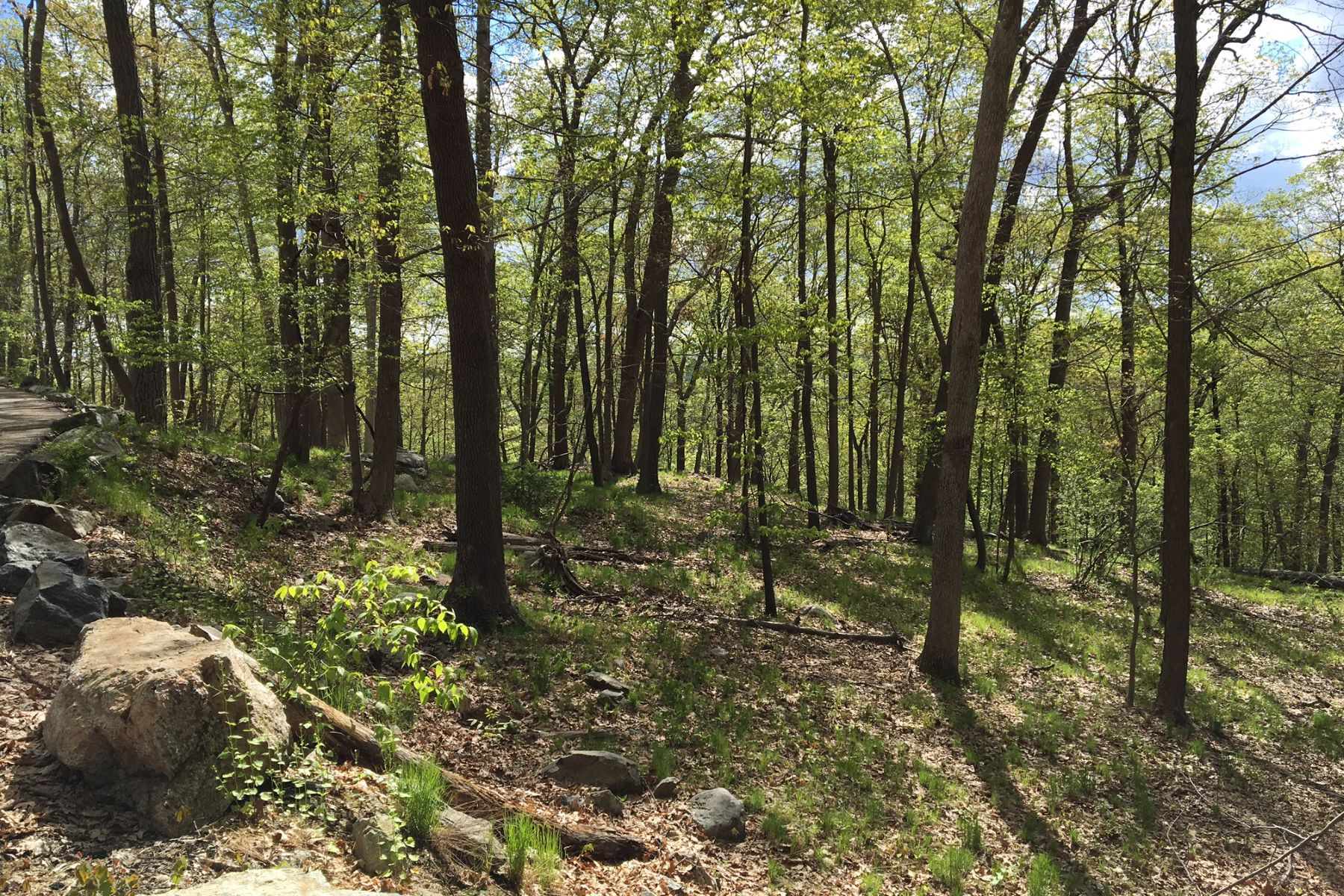 Additional photo for property listing at Mountain Wood Pine Hill Road Tuxedo Park, New York 10987 United States