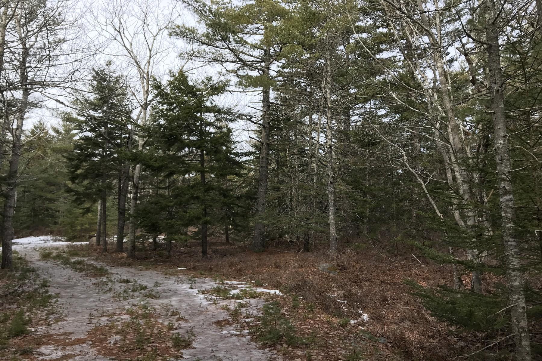 Land for Sale at 0 Cider Ridge Road Mount Desert, Maine, 04660 United States