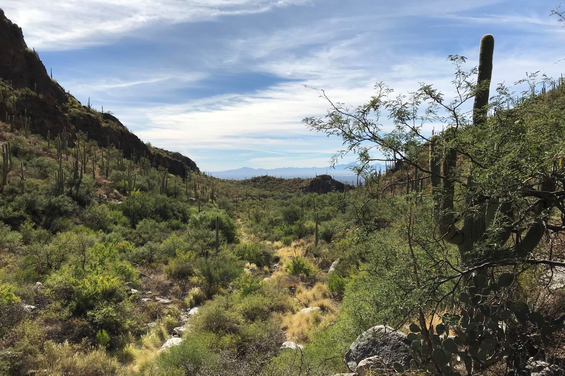 Land for Active at Location, Privacy, Views 6809 N Flying V Ranch Rd Tucson, Arizona 85750 United States