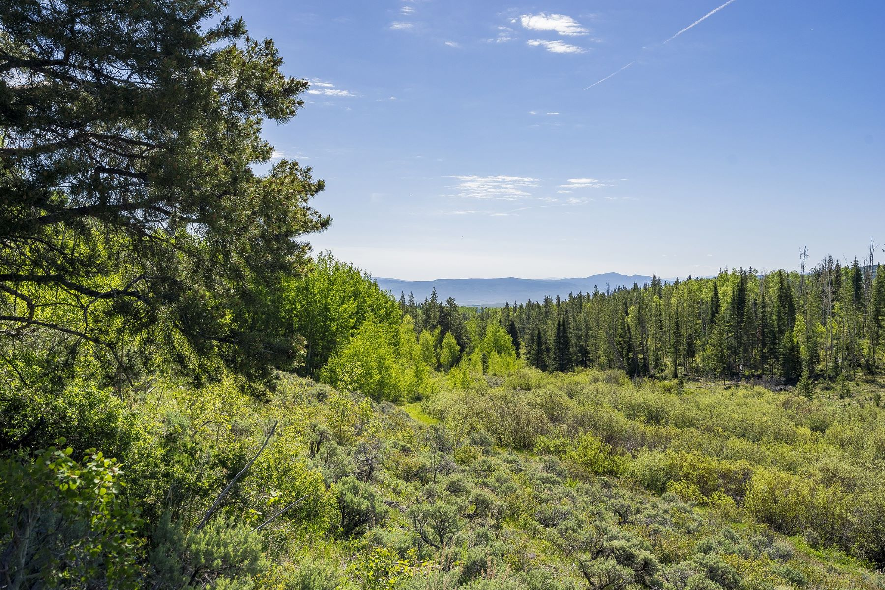 Additional photo for property listing at Five Pine Mesa Ranch 24655 County Road 3B, Yampa, Колорадо 80483 Соединенные Штаты