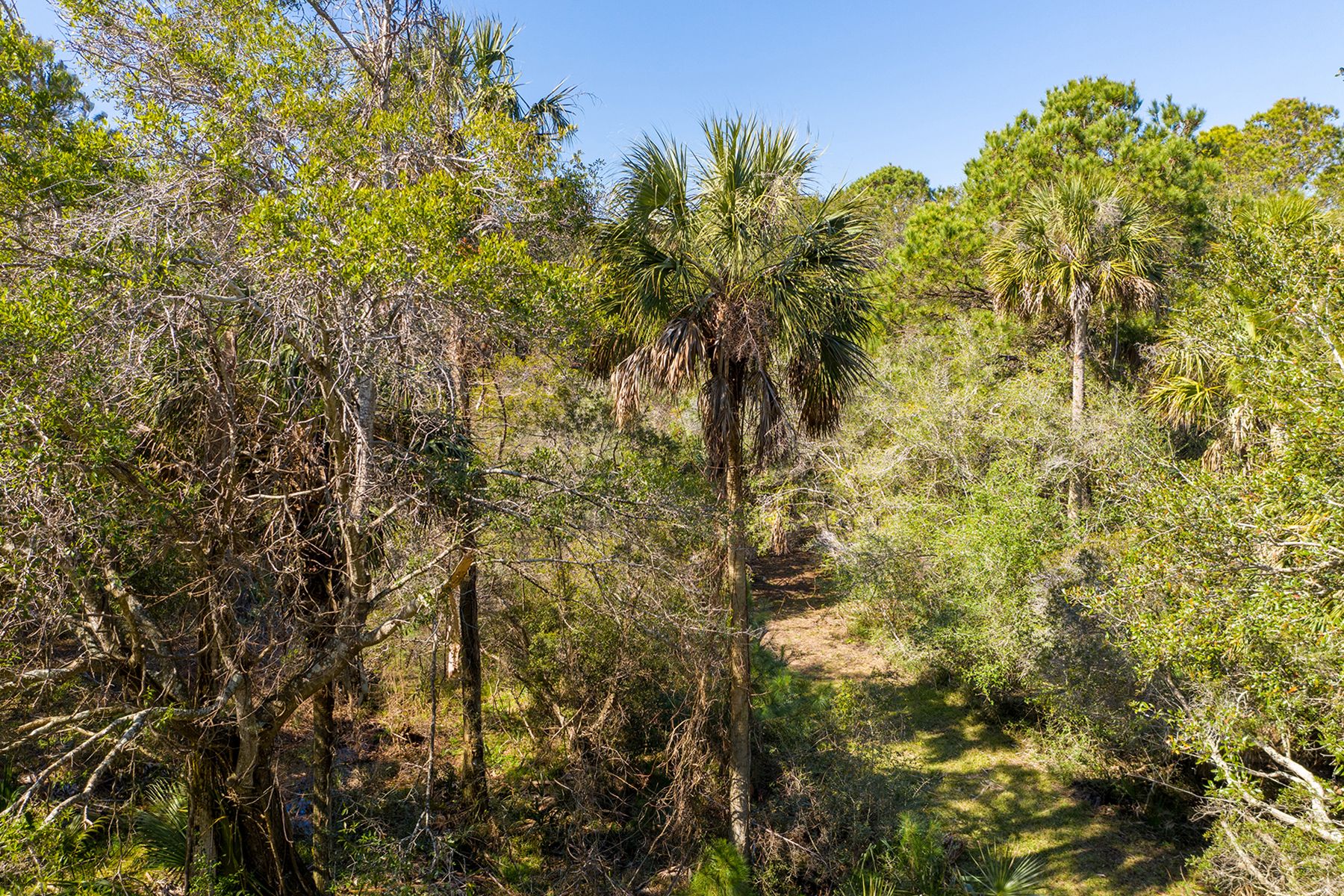 Land for Sale at 302 Pelican Flight Drive Dewees Island, South Carolina 29451 United States