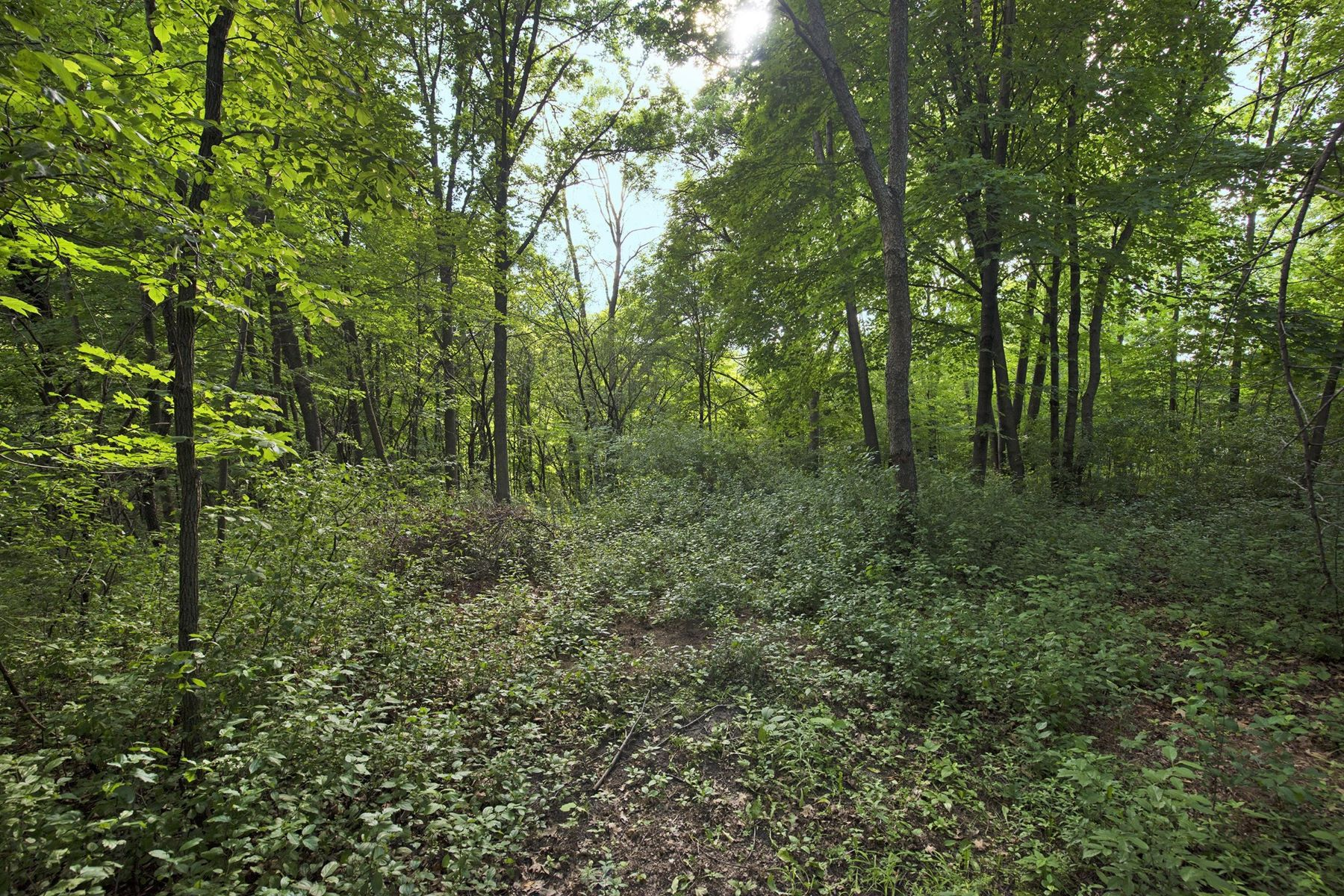 Land for Sale at 7582 Erie Avenue Chanhassen, Minnesota 55317 United States