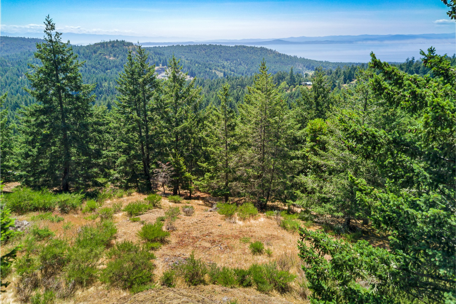 Land for Sale at Breathtaking 180° View Lot XXX Capron Road Friday Harbor, Washington 98250 United States
