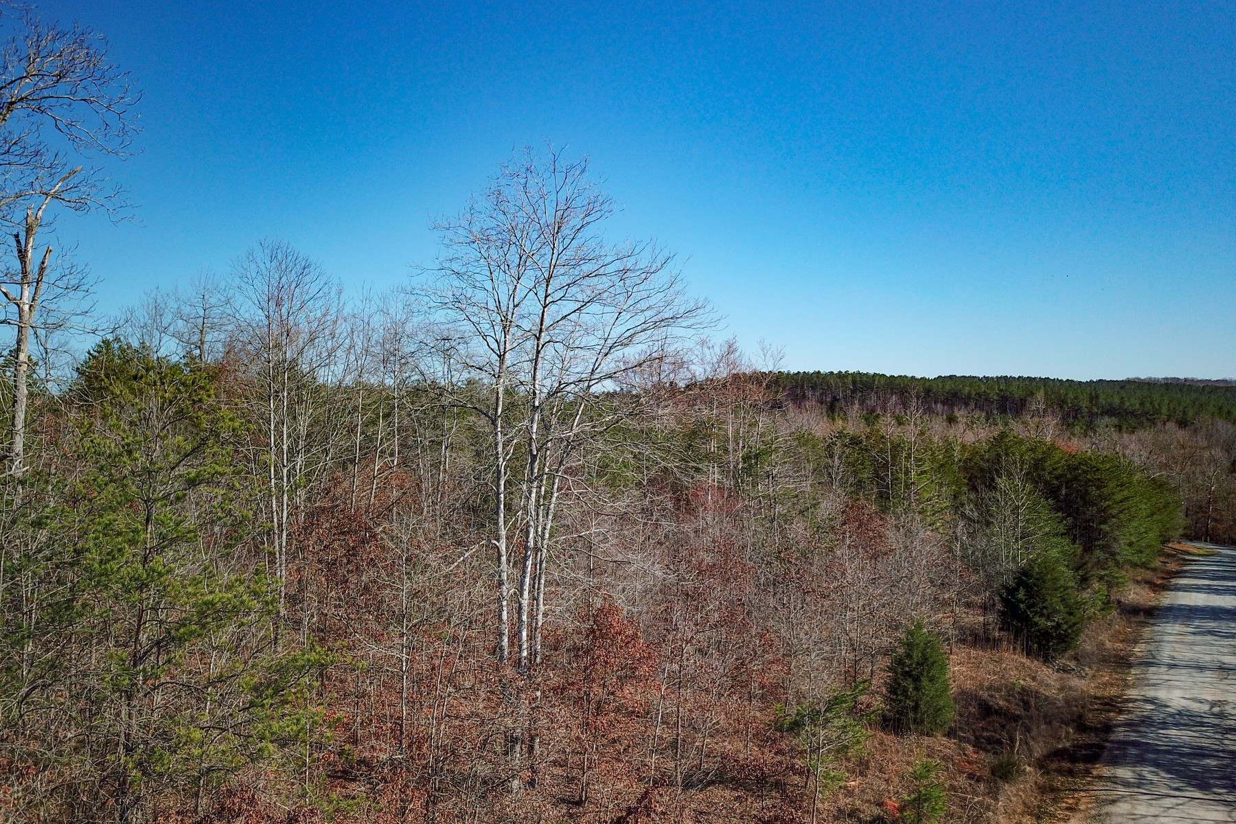 Land for Sale at Lot #39 Zachary Lane in Green River Highlands 39 Zachary Lane Rutherfordton, North Carolina 28139 United States
