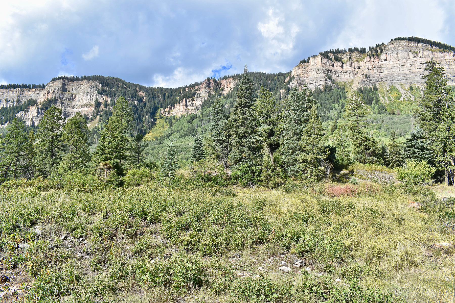 Additional photo for property listing at Peregrine Peaks at Windom Ranch TBD N Windom Way Peregrine Peaks at Windom Ranch 杜兰戈, 科罗拉多州 81301 美国