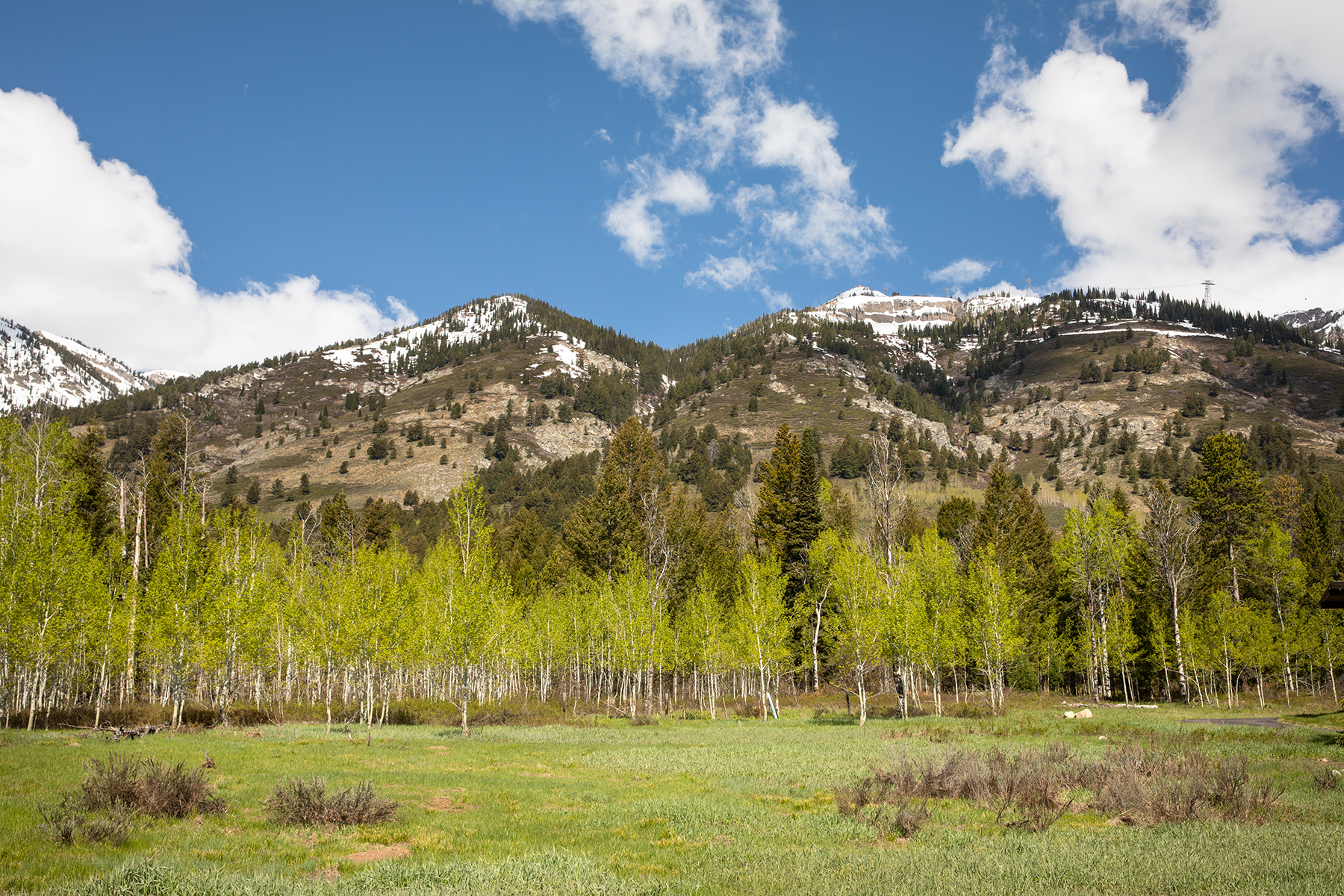 Terrain pour l Vente à Premier Shooting Star Home Site 3635 Coyote Creek, Lot 8, Teton Village, Wyoming 83025 États-Unis