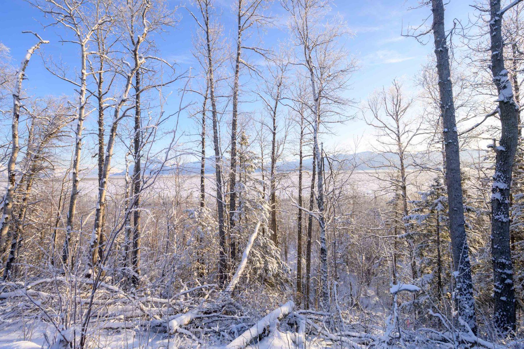 Terreno por un Venta en Glacier View Estates L5 B2 Teton Circle L5 B2 S. Teton Circle Wasilla, Alaska 99654 Estados Unidos