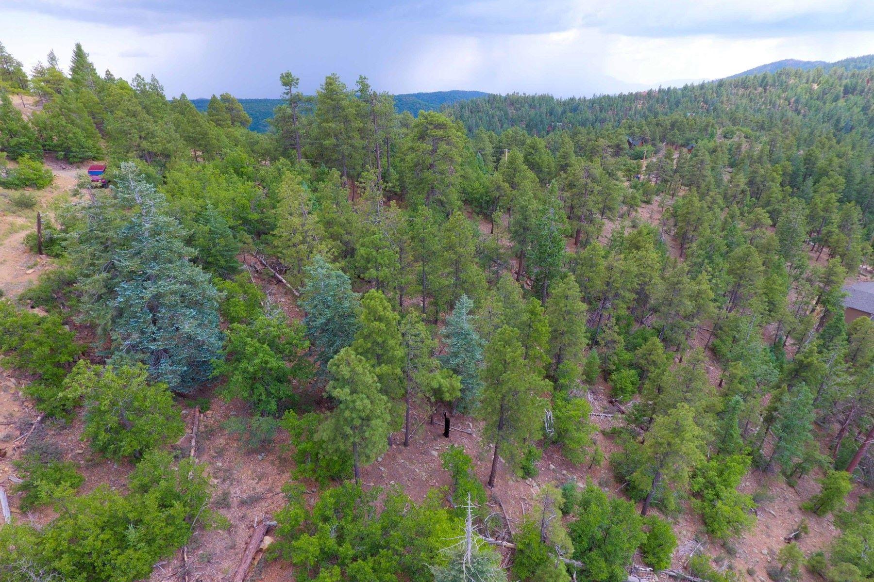Land für Verkauf beim Beautiful mountain and valley views from these two lots 7750 S Snowdrift Mine RD A1 & A2 Prescott, Arizona, 86303 Vereinigte Staaten