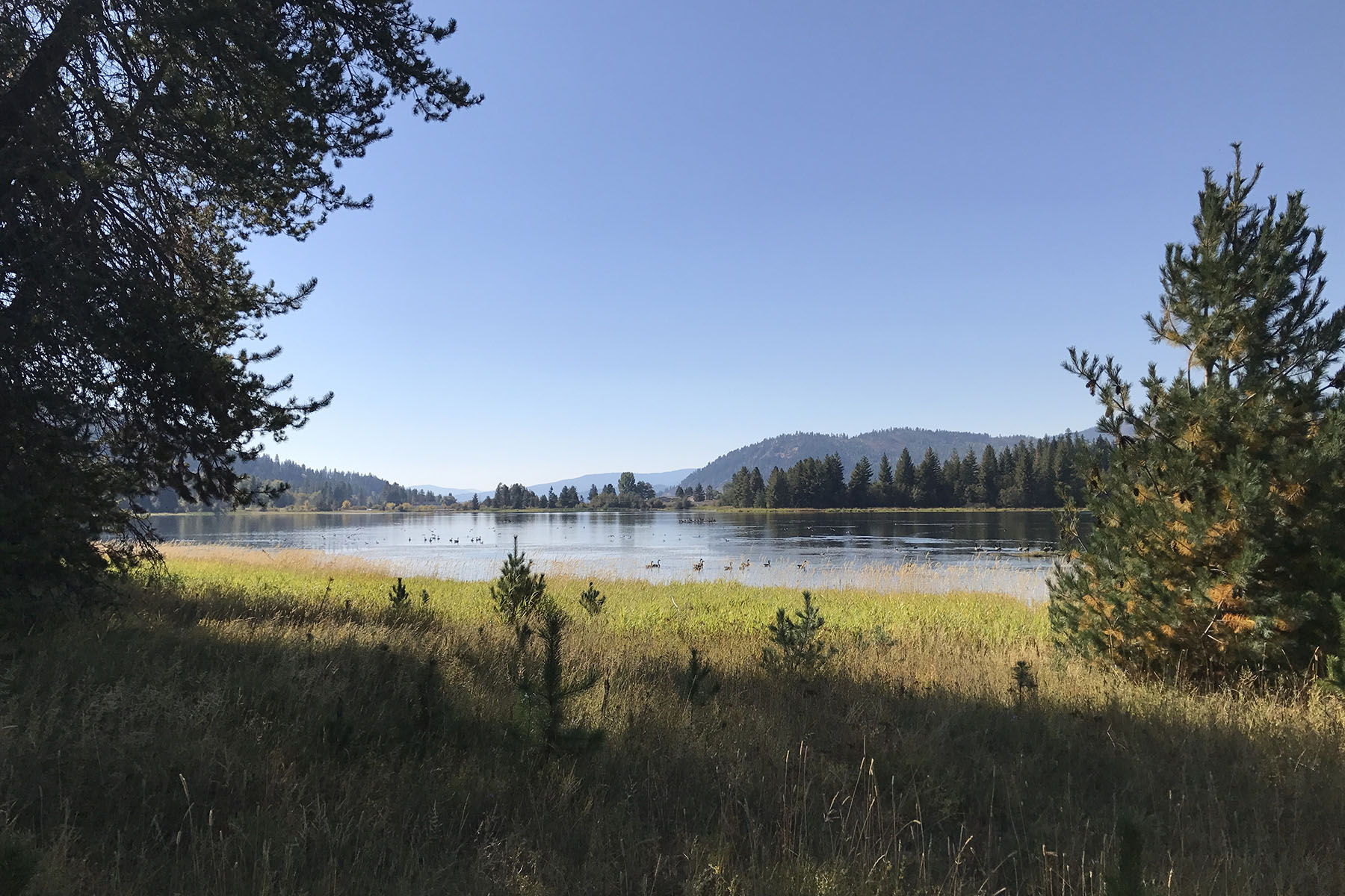 Additional photo for property listing at Great Opportunity for Mountain Living Blk 1 Lot 6 Ledges Dr Sagle, Idaho 83860 United States