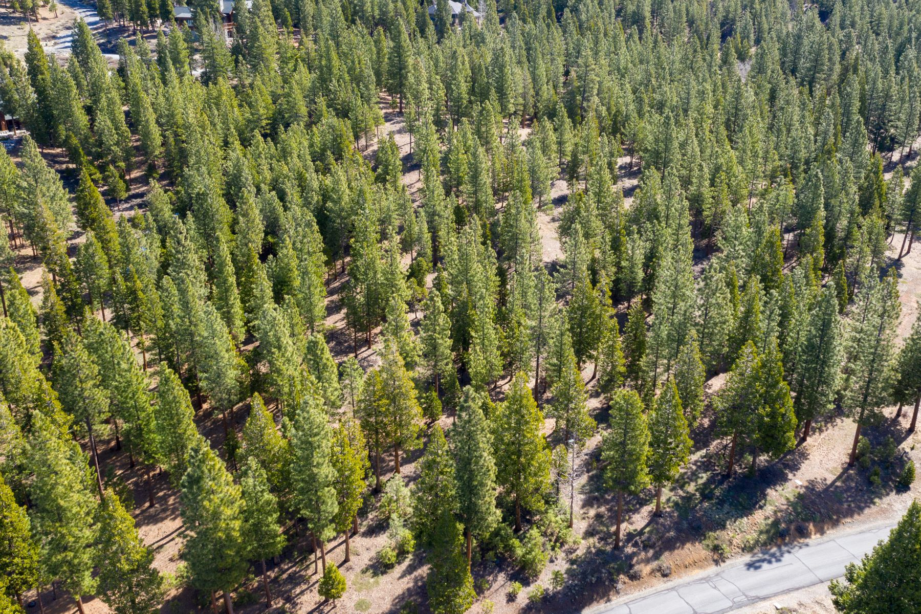 Additional photo for property listing at 696 Blacktail Ridge, Portola, CA, 96122 696 Blacktail Ridge Portola, California 96122 United States