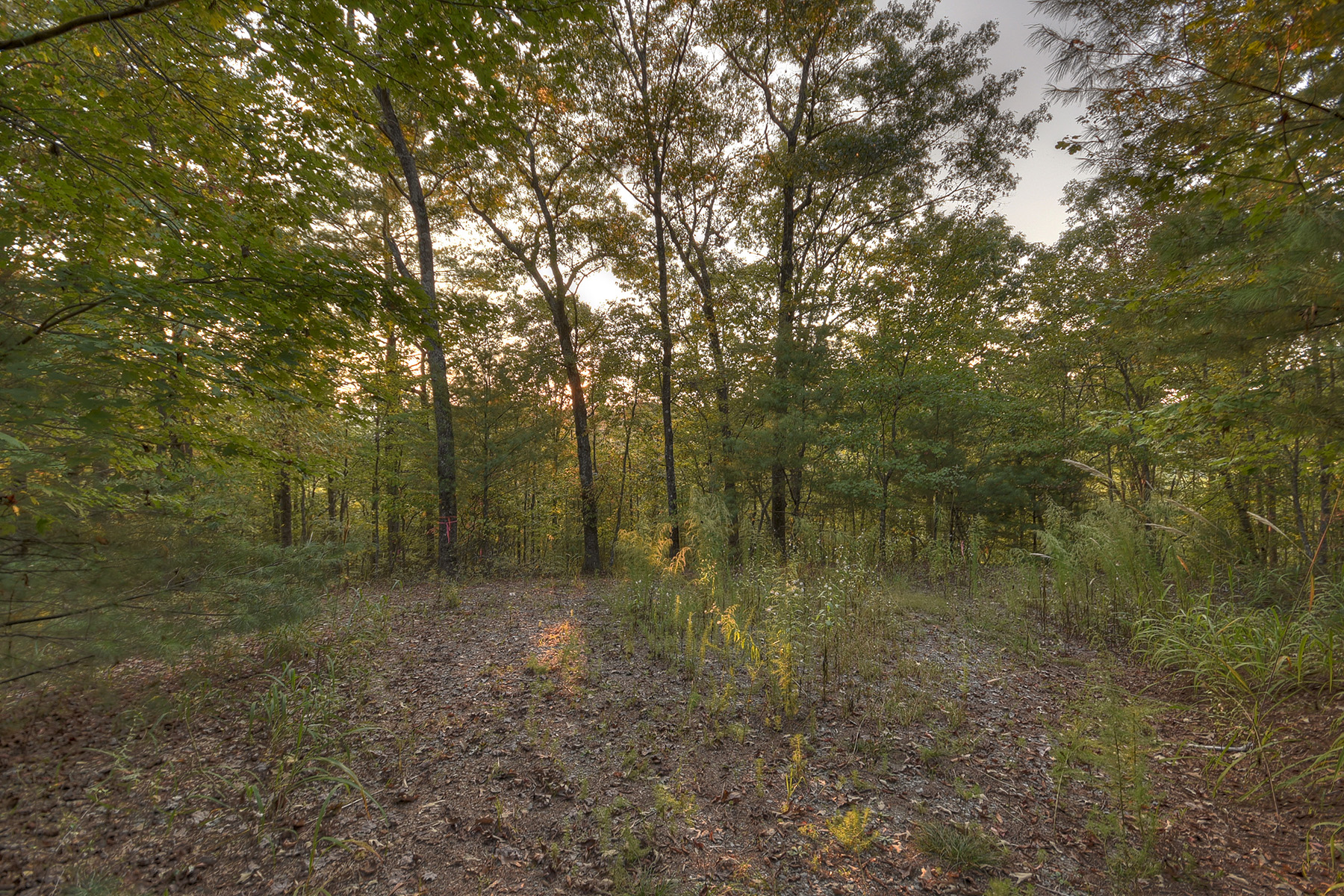 Земля для того Продажа на River Front Lot on Mighty Toccoa River in North Georgia Lot 84 Coldwater Creek Dr, Mineral Bluff, Джорджия 30559 Соединенные Штаты
