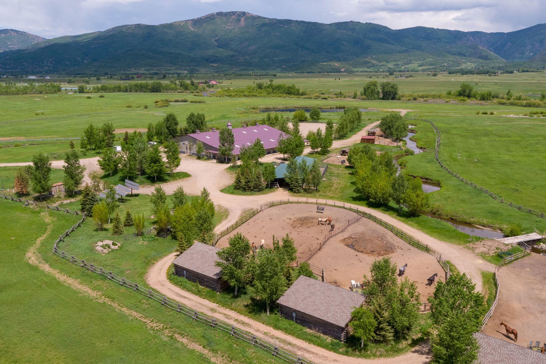 Granjas / Hacienda / Platanción por un Venta en Wandering Creek Ranch 33850 (51 Acres) County Road 14 Steamboat Springs, Colorado 80487 Estados Unidos