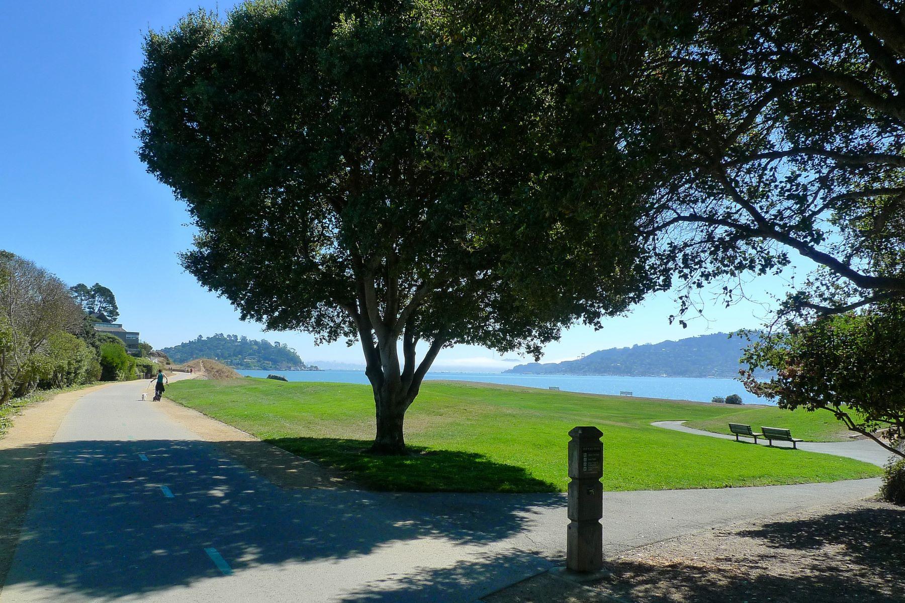 一戸建て のために 売買 アット Contemporary Remodel in Tiburon 20 Pine Terrace Tiburon, カリフォルニア, 94920 アメリカ合衆国
