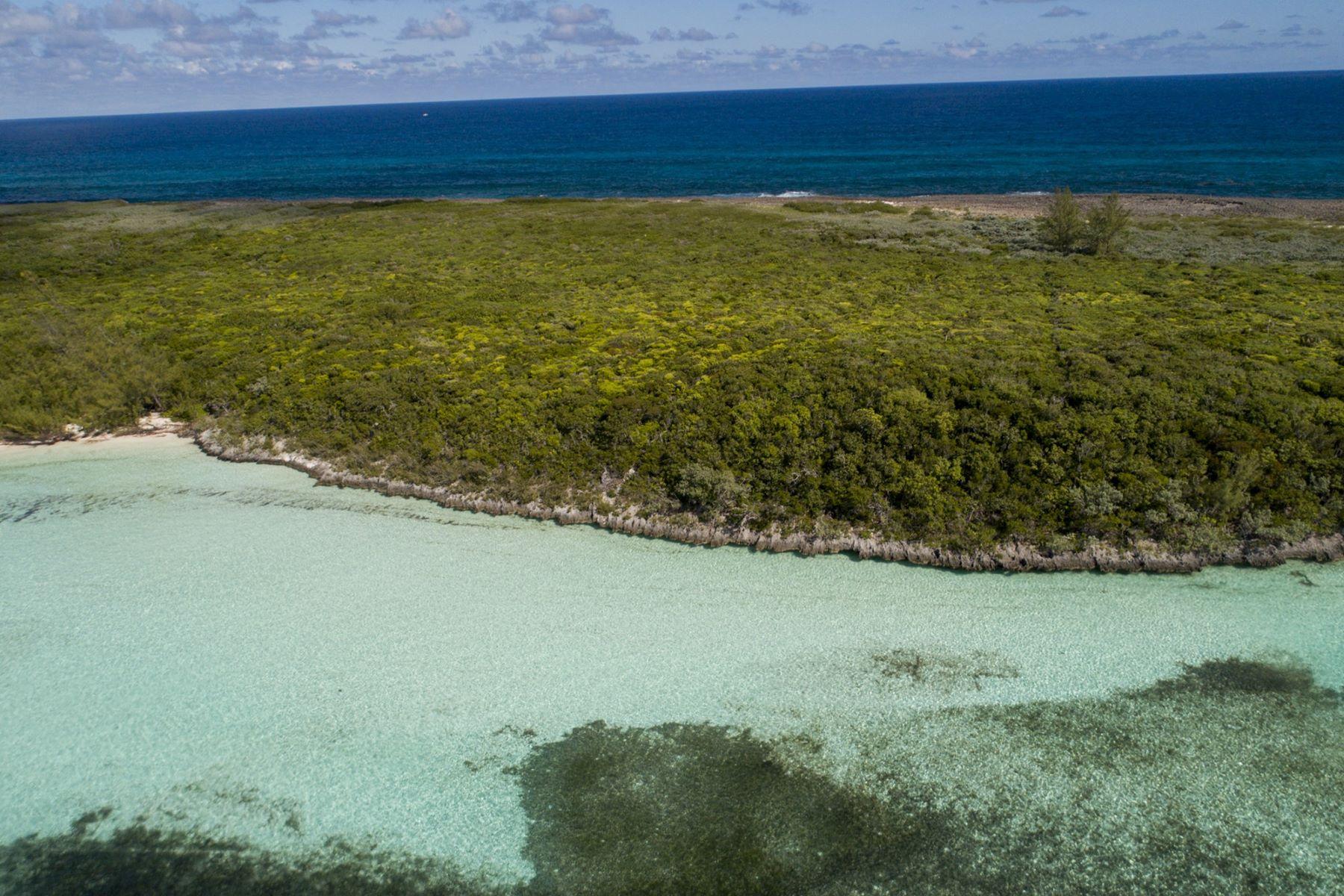 土地,用地 为 销售 在 Tilloo Bank Lot 2 Tilloo Cay, 阿巴科 巴哈马