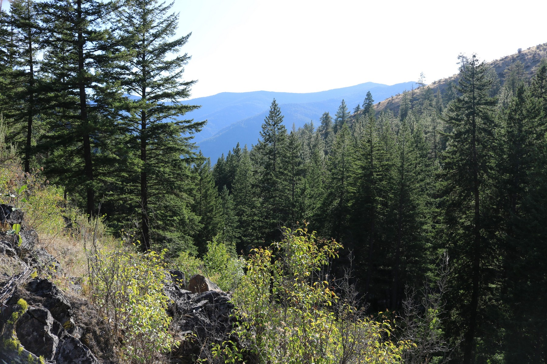 Land for Sale at Lot 2 Mclaughlin Creek Road Paradise, Montana 59856 United States