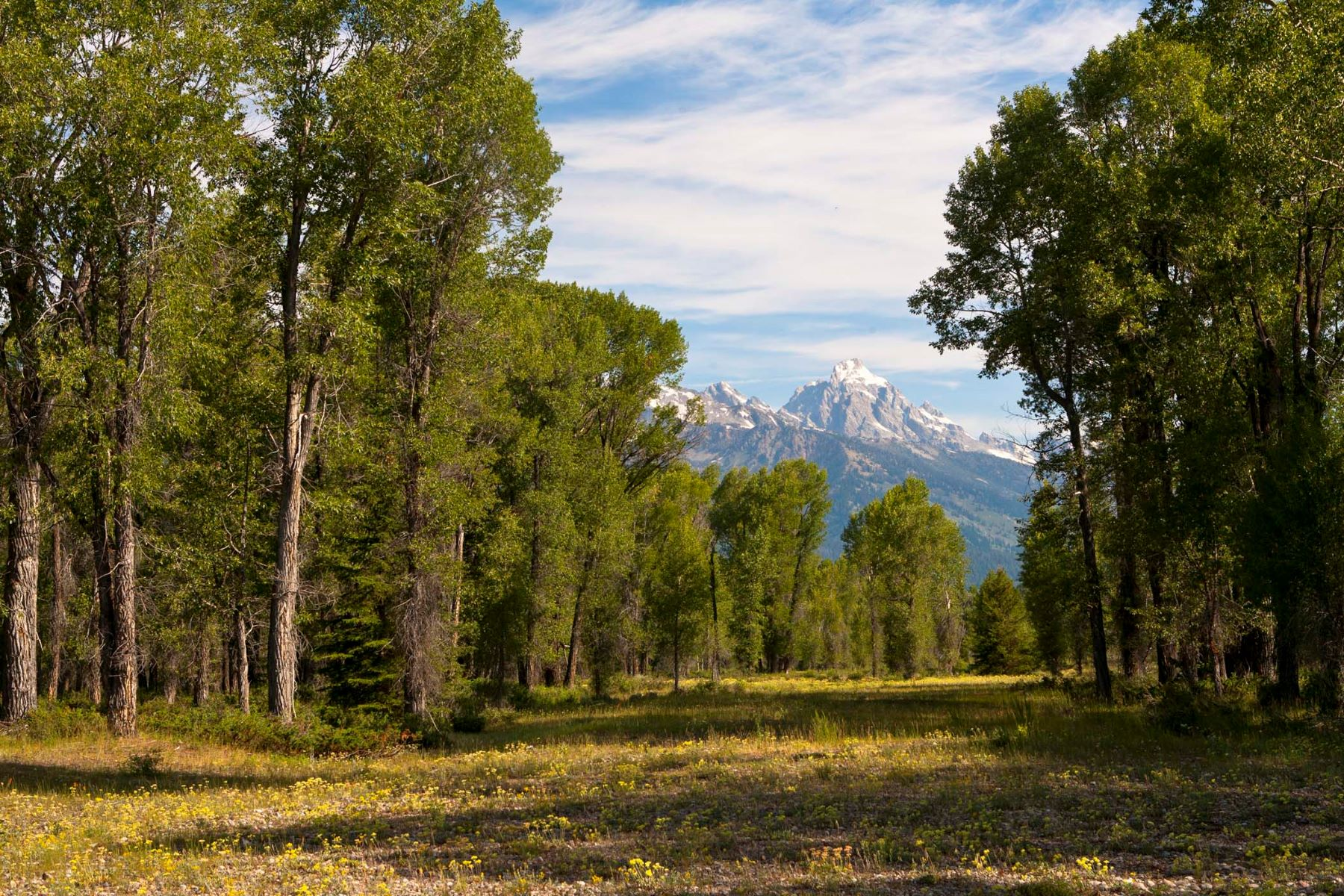 Land for Sale at Snake River Sanctuary Tract A & B (See Legal) Jackson, Wyoming, 83001 Jackson Hole, United States