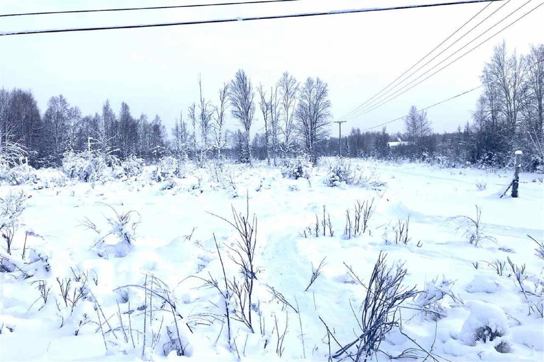Land for Sale at NHN Benn Lane North Pole, Alaska 99705 United States