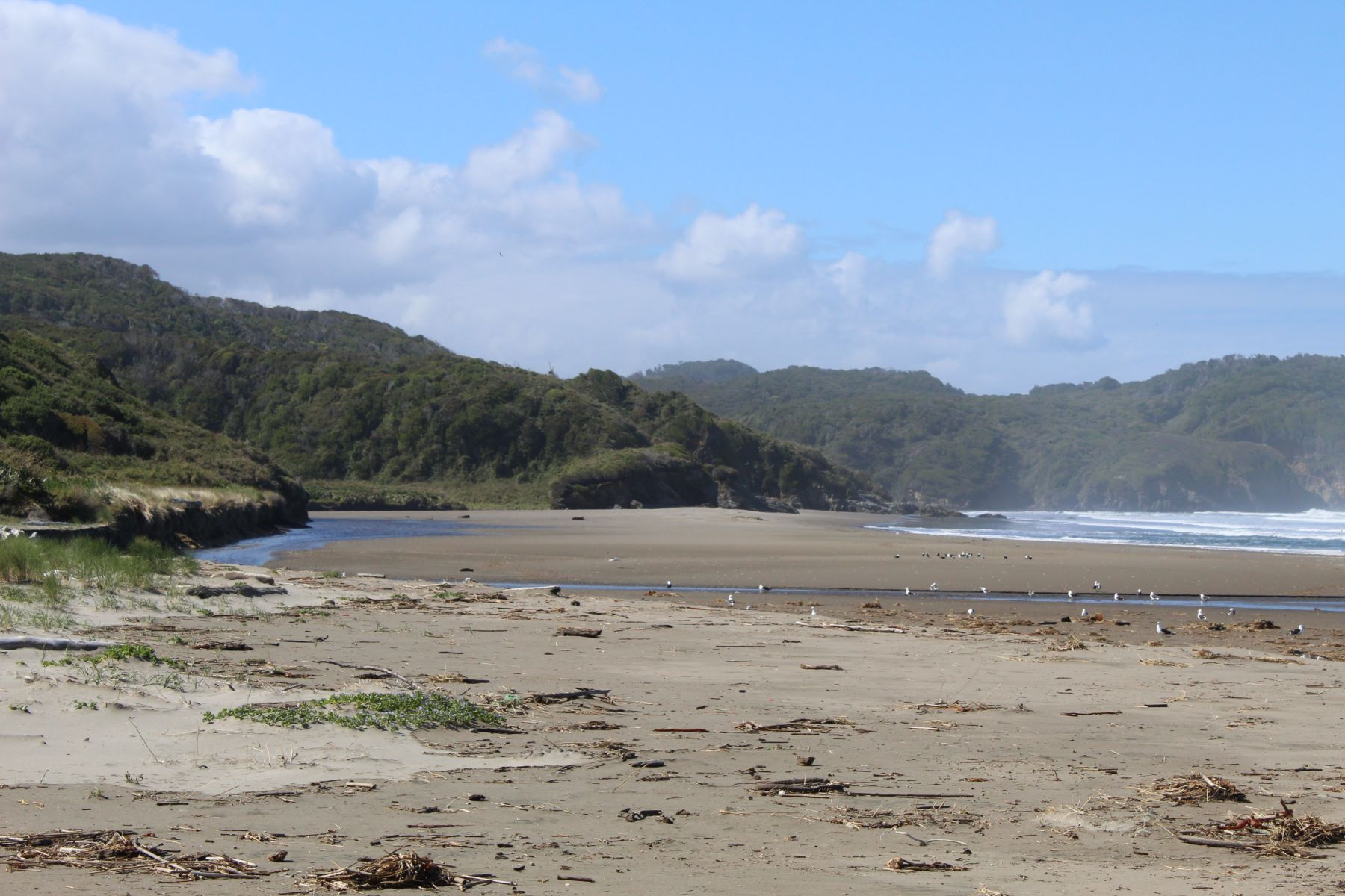 Additional photo for property listing at Fresia, Puerto Montt, Los Lagos Chile