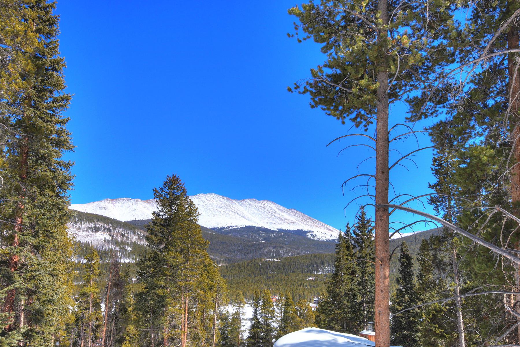 Crown Subdivision 0437 Crown Drive Breckenridge, Colorado 80424 United States