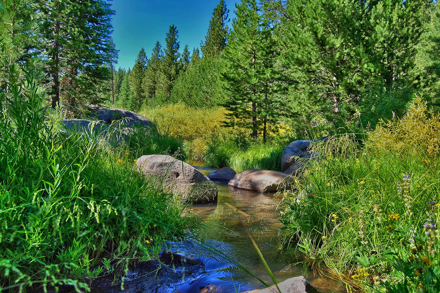 Land for Active at 11552 Euer Valley Rd, Truckee Ca 96161 11552 Euer Valley Road Truckee, California 96161 United States