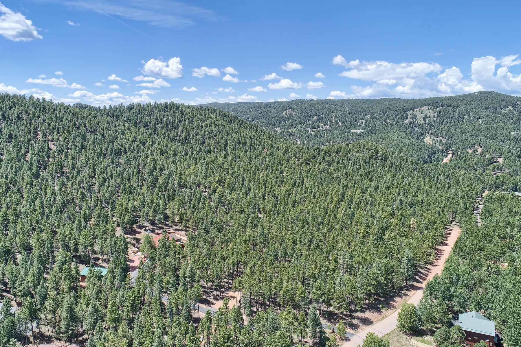 土地 為 出售 在 25 +/- acres of land with 4-wheel drove road across the property 1305 Windflower Ln, Woodland Park, 科羅拉多州 80863 美國