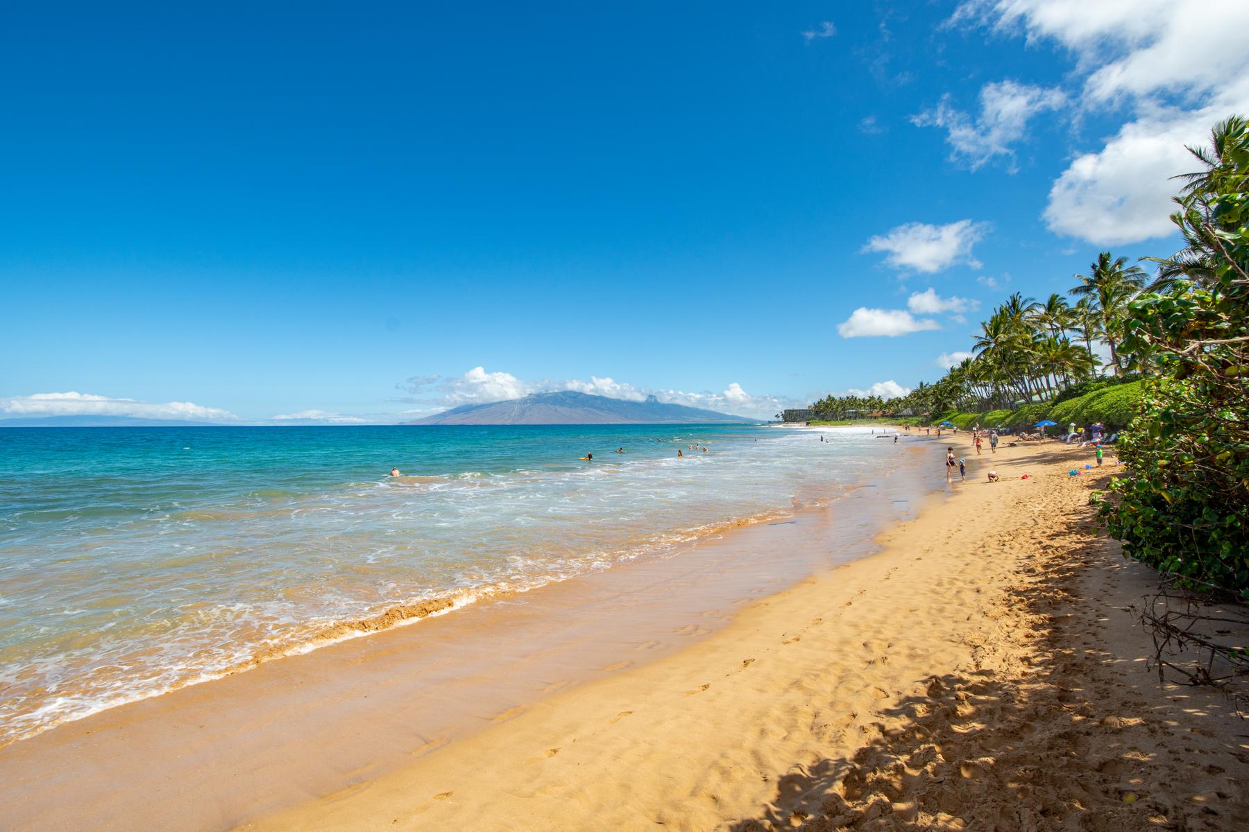 Condominiums 為 出售 在 Rare, Turnkey Oceanview Studio in Beautiful Wailea Ekahi 3300 Wailea Alanui Dr, Wailea Ekahi 44E, Wailea, 夏威夷 96753 美國