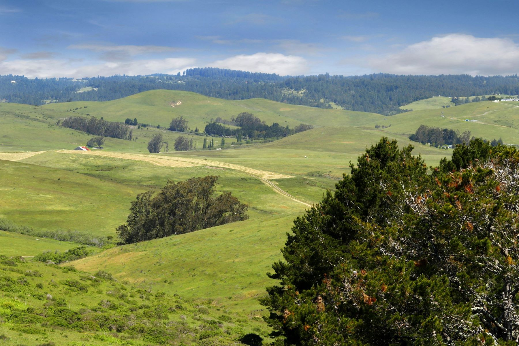 Land for Active at West Marin Acreage 3501 Valley Ford Franklin School Road Petaluma, California 94953 United States
