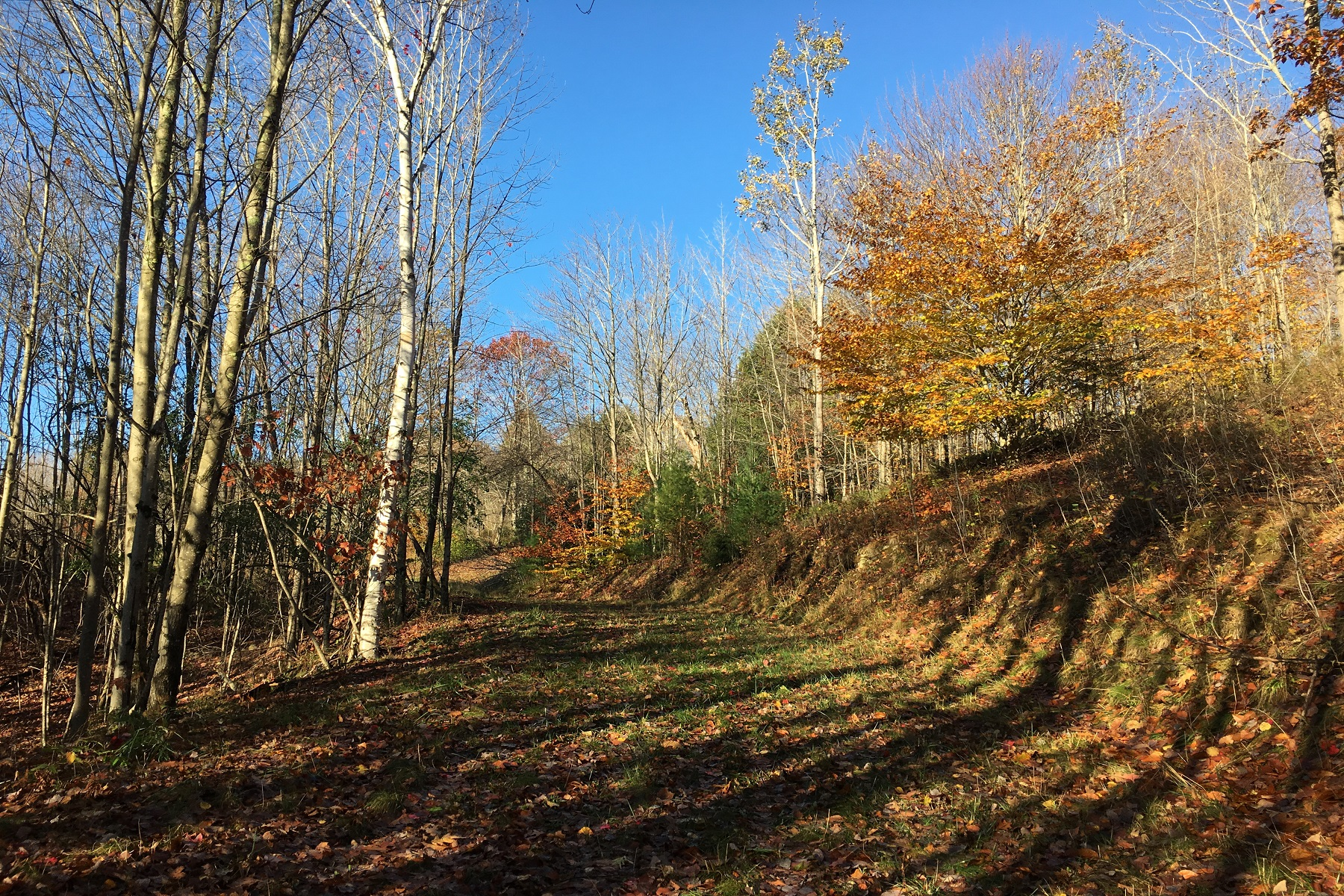 Land for Sale at Lovely Building Parcel Cross Road West Windsor, Vermont 05089 United States