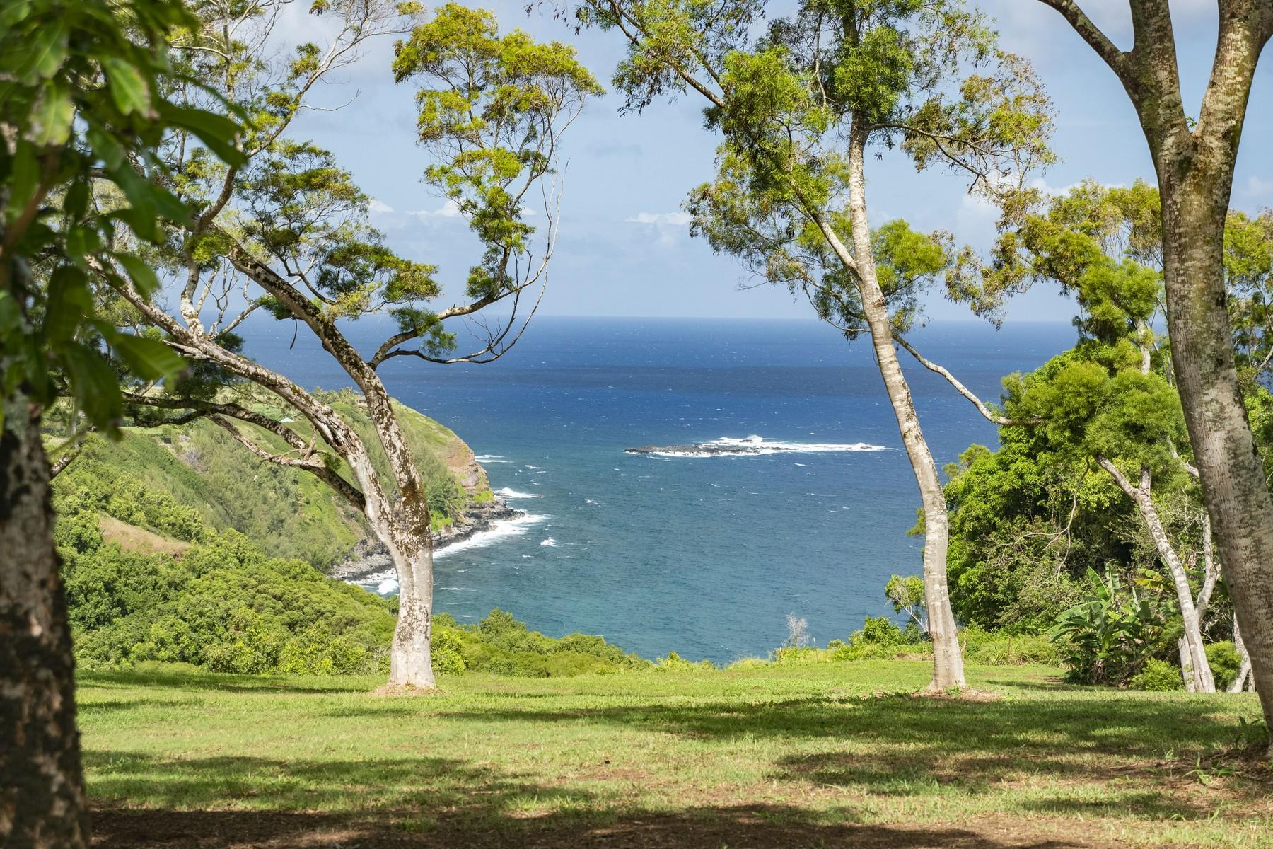 토지 용 매매 에 Build your Dream Home in the Fairytail Location 3 Kamau Rd, Haiku, 하와이 96708 미국