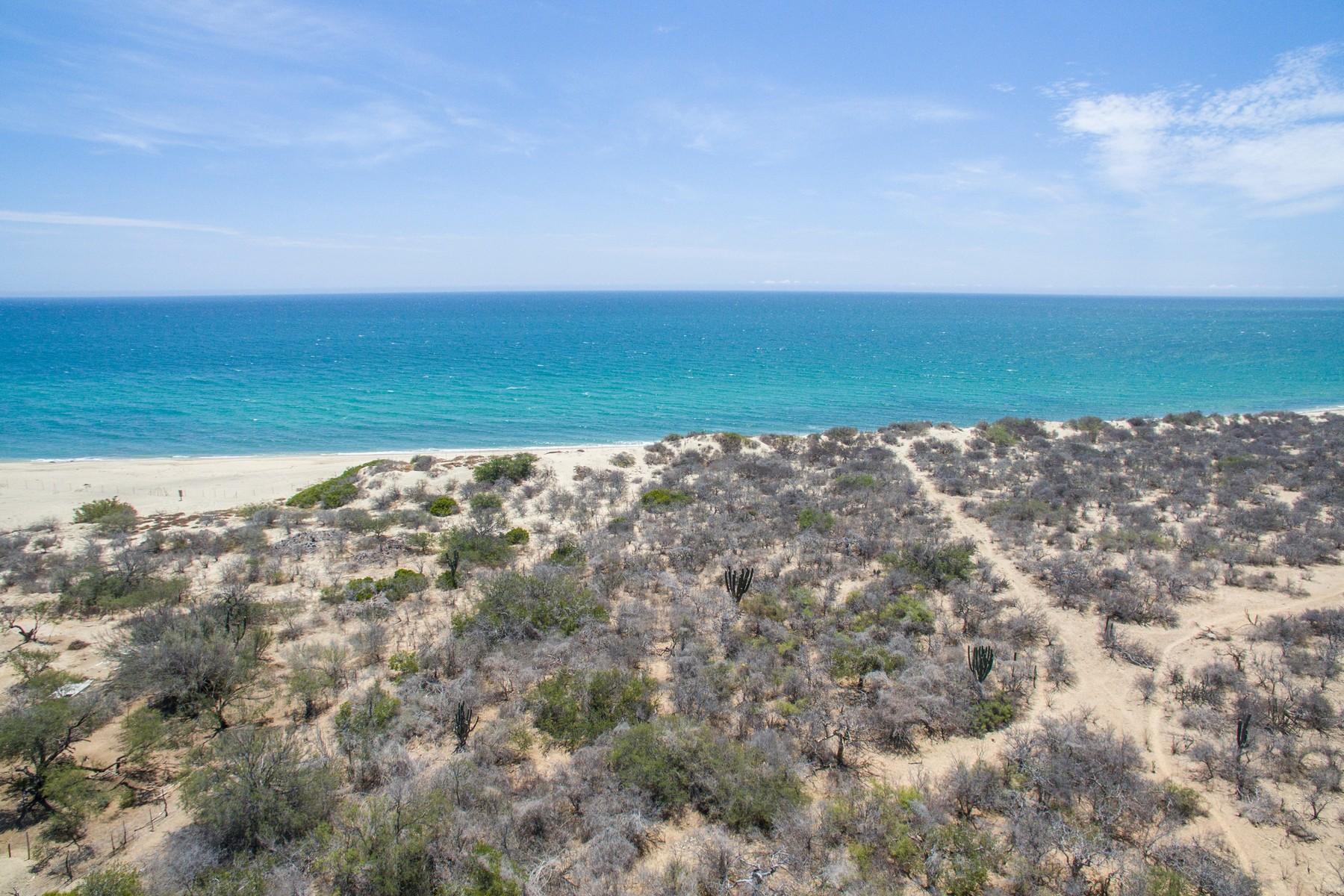 Land for Sale at GRE RINCON CABO PULMO La Ribera San Jose Del Cabo, 23570 Mexico