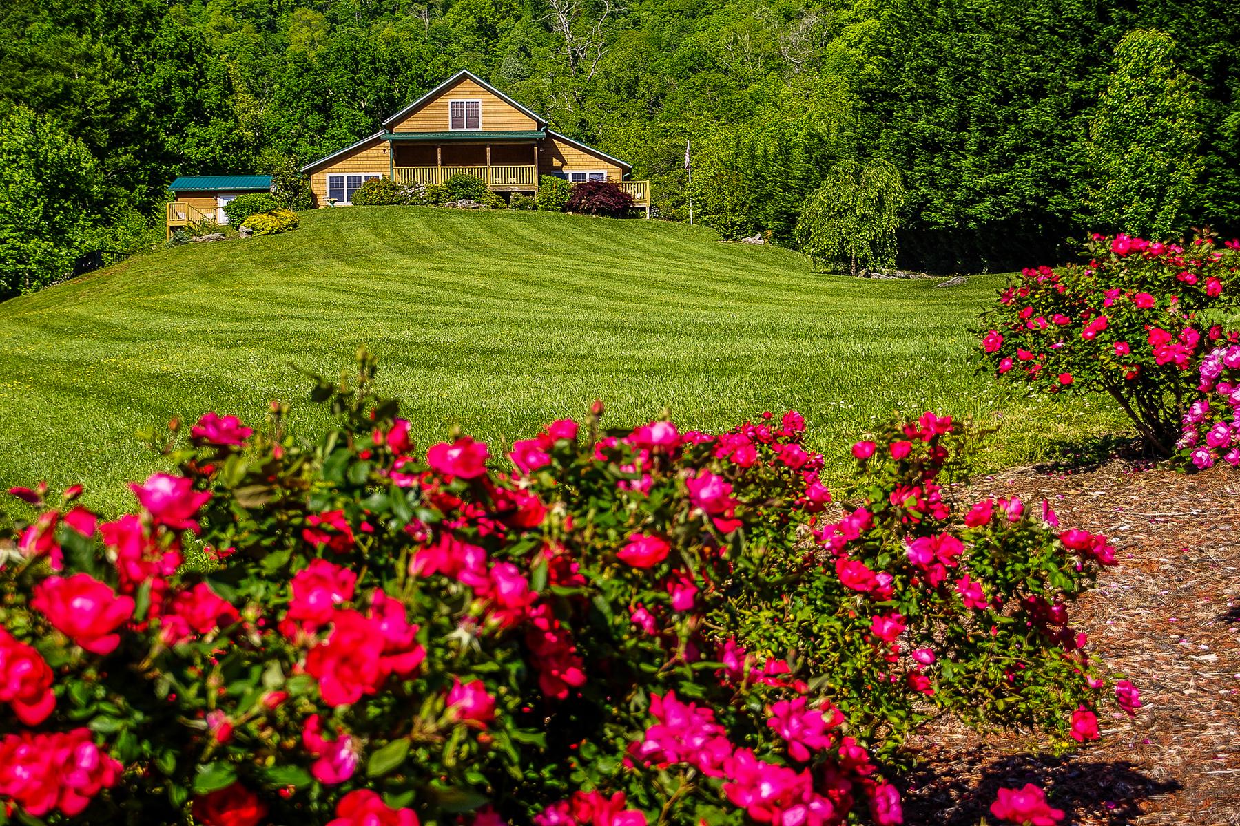 Single Family Homes for Active at CANTON 76 Sugarbush Ln Canton, North Carolina 28716 United States