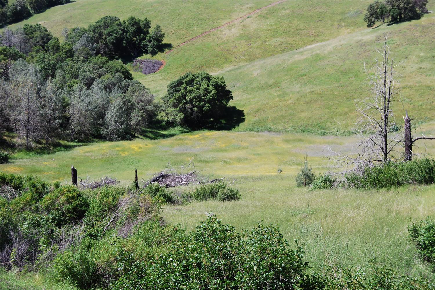 Land for Active at 1661 Storksbill Rd, Pilot Hill, CA 95664 1661 Storksbill Rd Pilot Hill, California 95664 United States