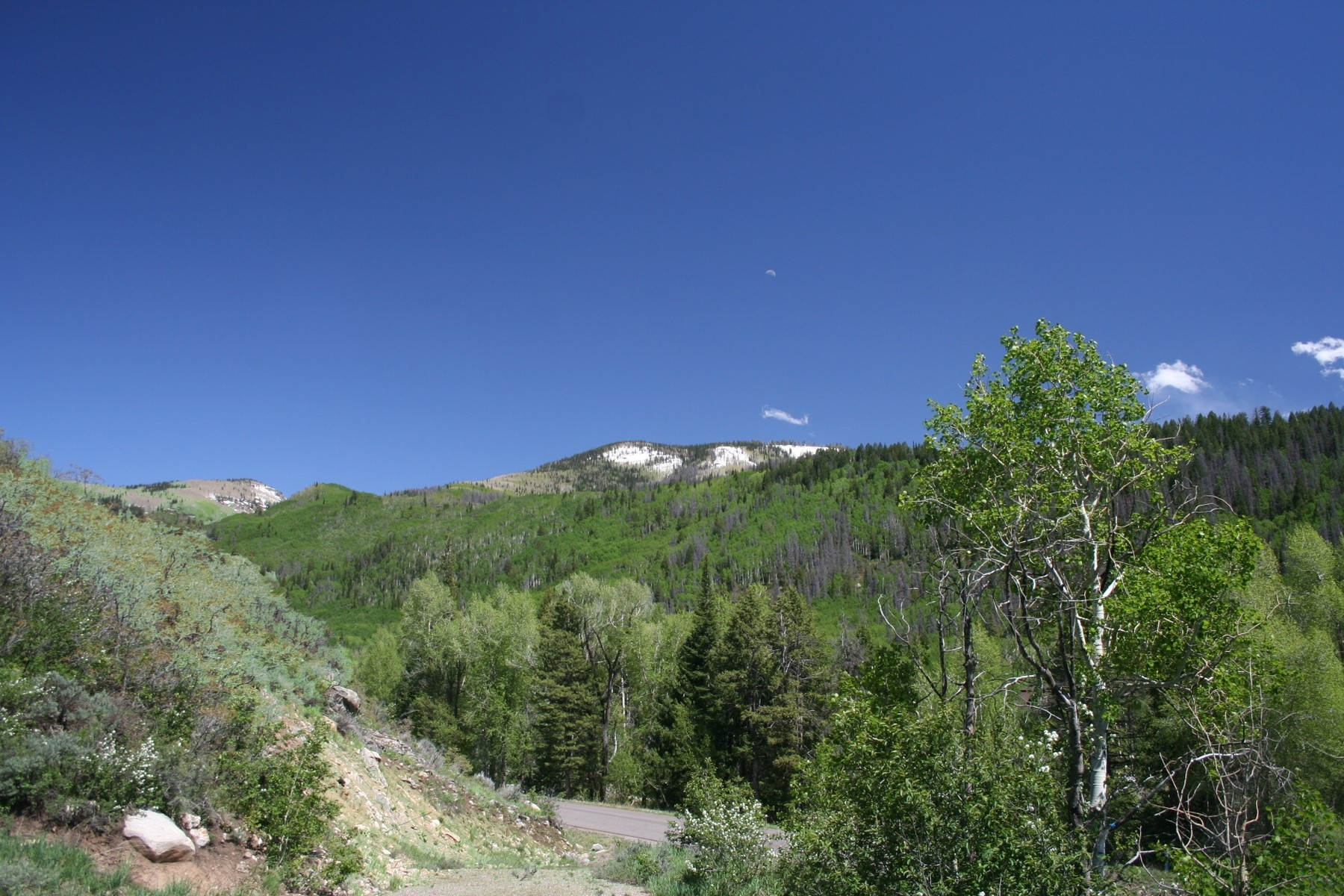 Land for Sale at The Sanctuary 2954 Clearwater Trail Steamboat Springs, Colorado 80487 United States
