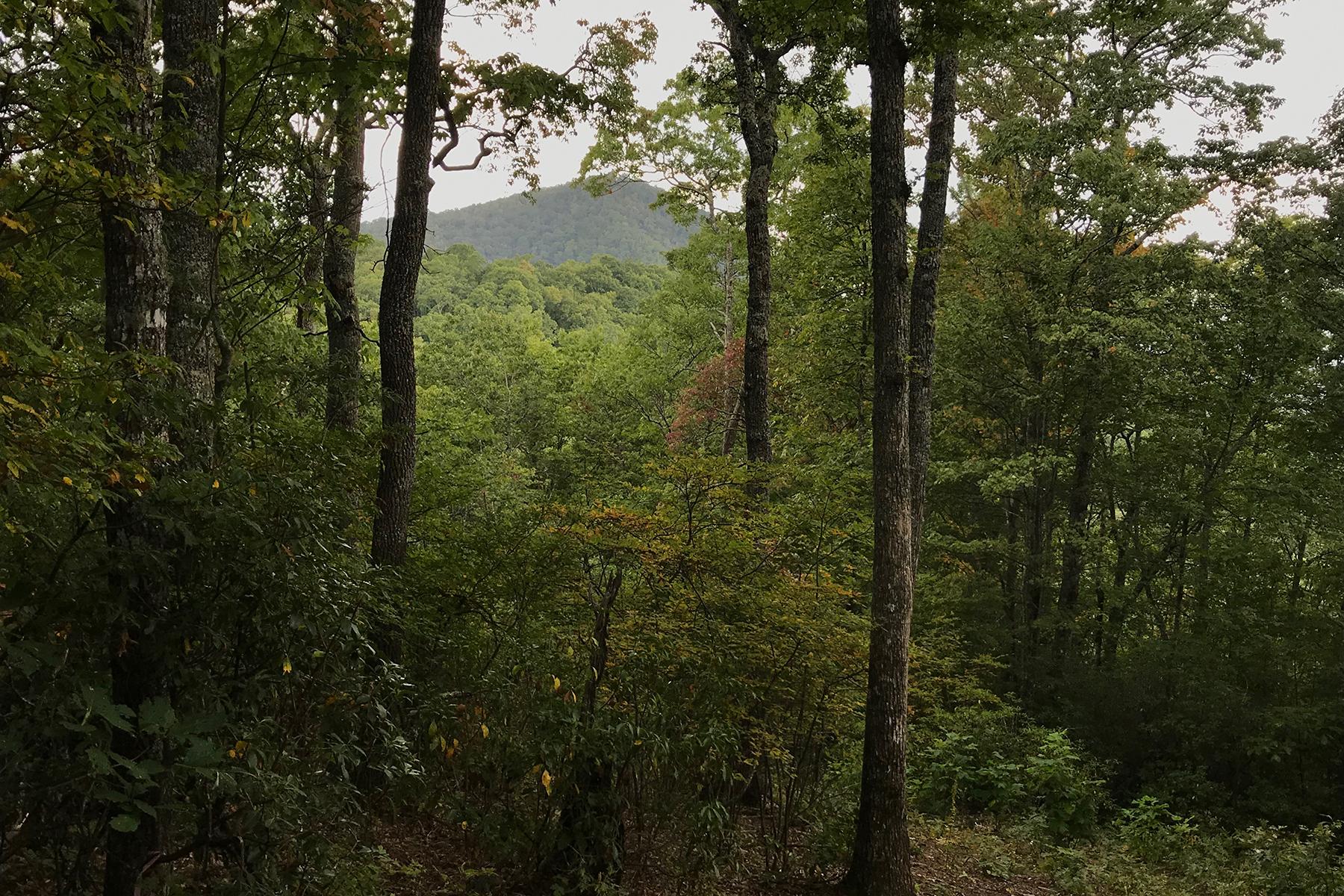 Land for Sale at BALSAM MOUNTAIN PRESERVE 148 Preserve Rd , 148 Sylva, North Carolina 28779 United States