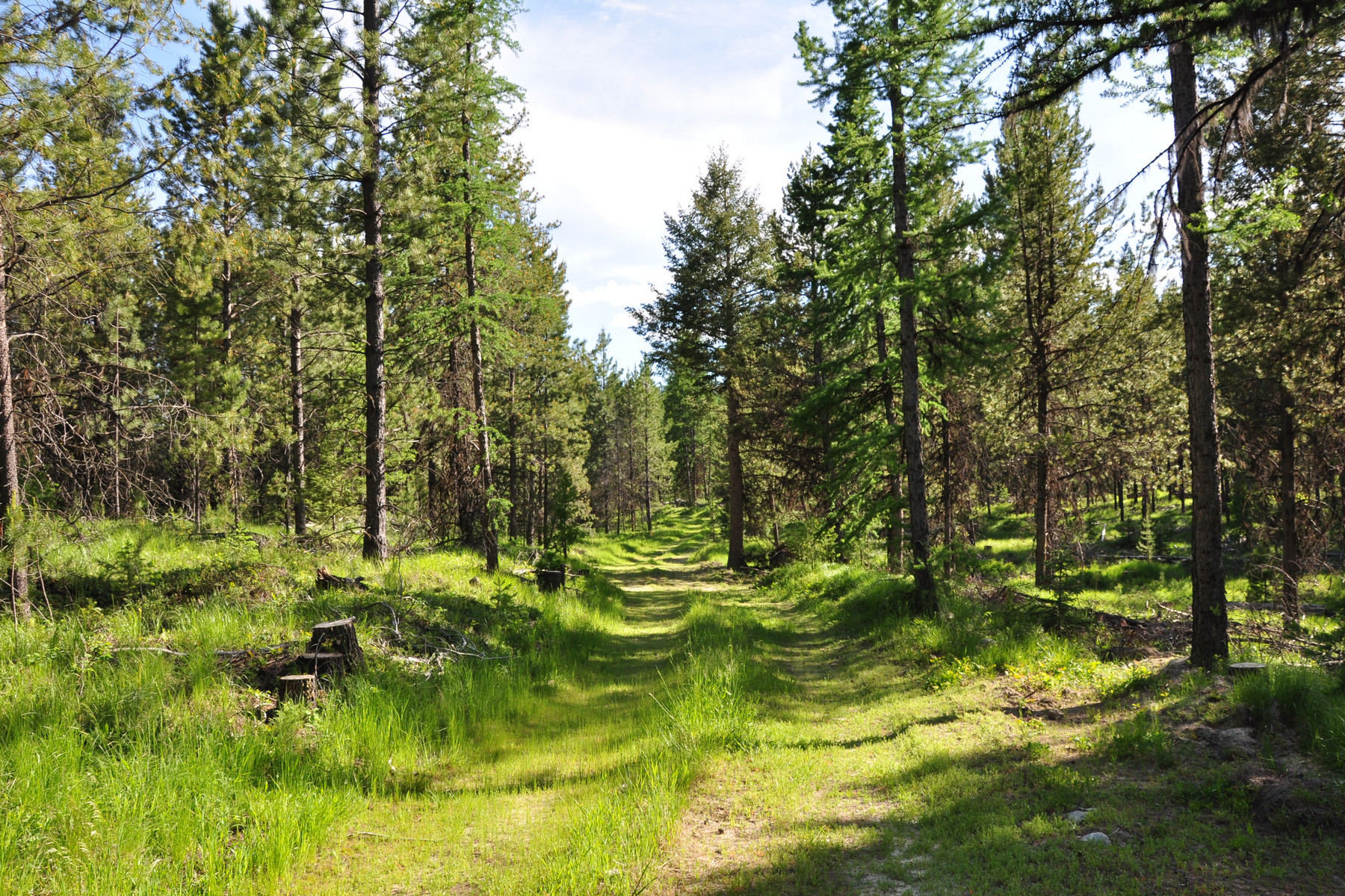 Land for Sale at Nhn Hockaday Lane , Oxen TR 3 Marion, Montana 59925 United States