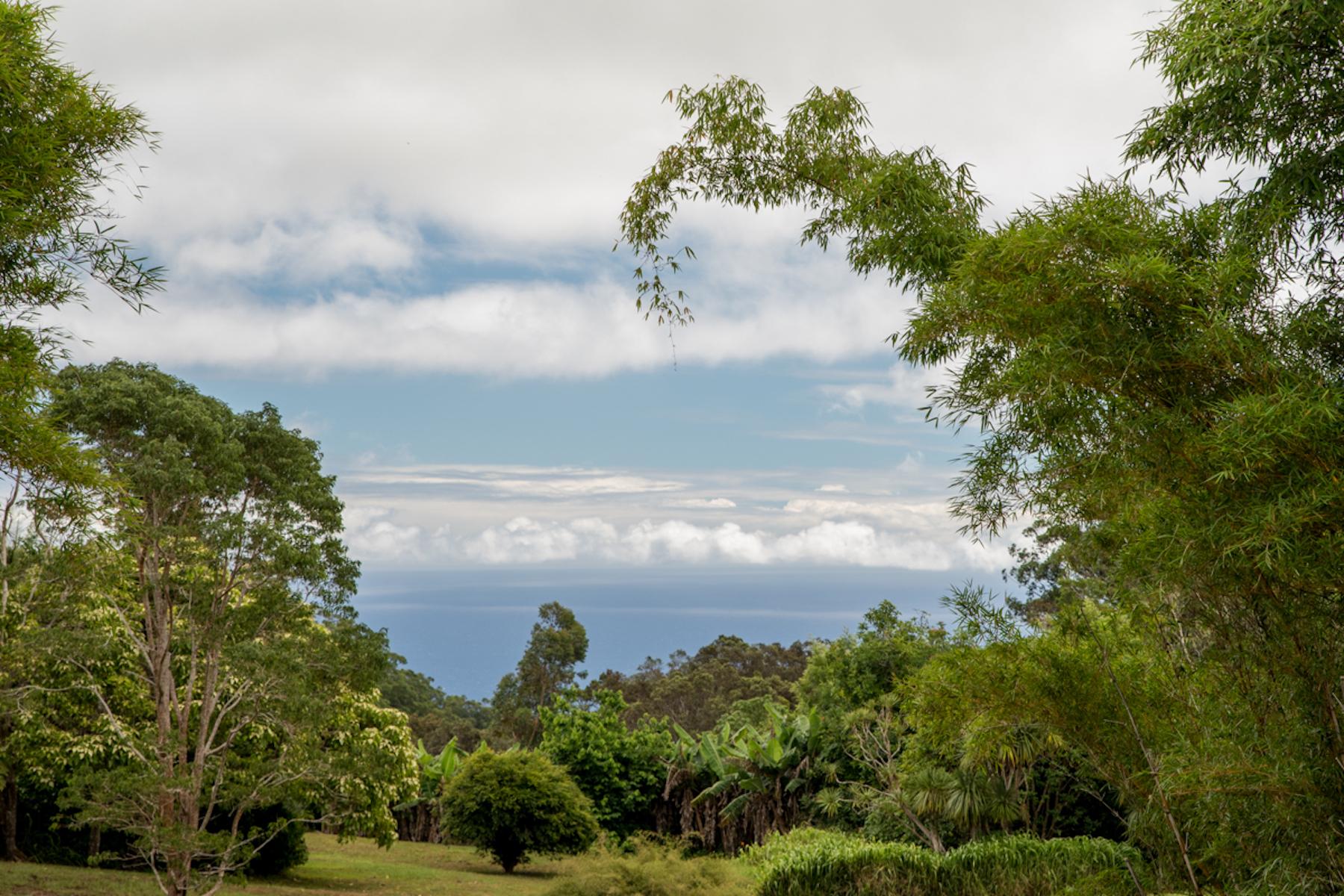 土地,用地 为 销售 在 Your Ocean View Estate awaits 44-4646 Waikaalulu Rd 霍诺卡, 夏威夷 96727 美国