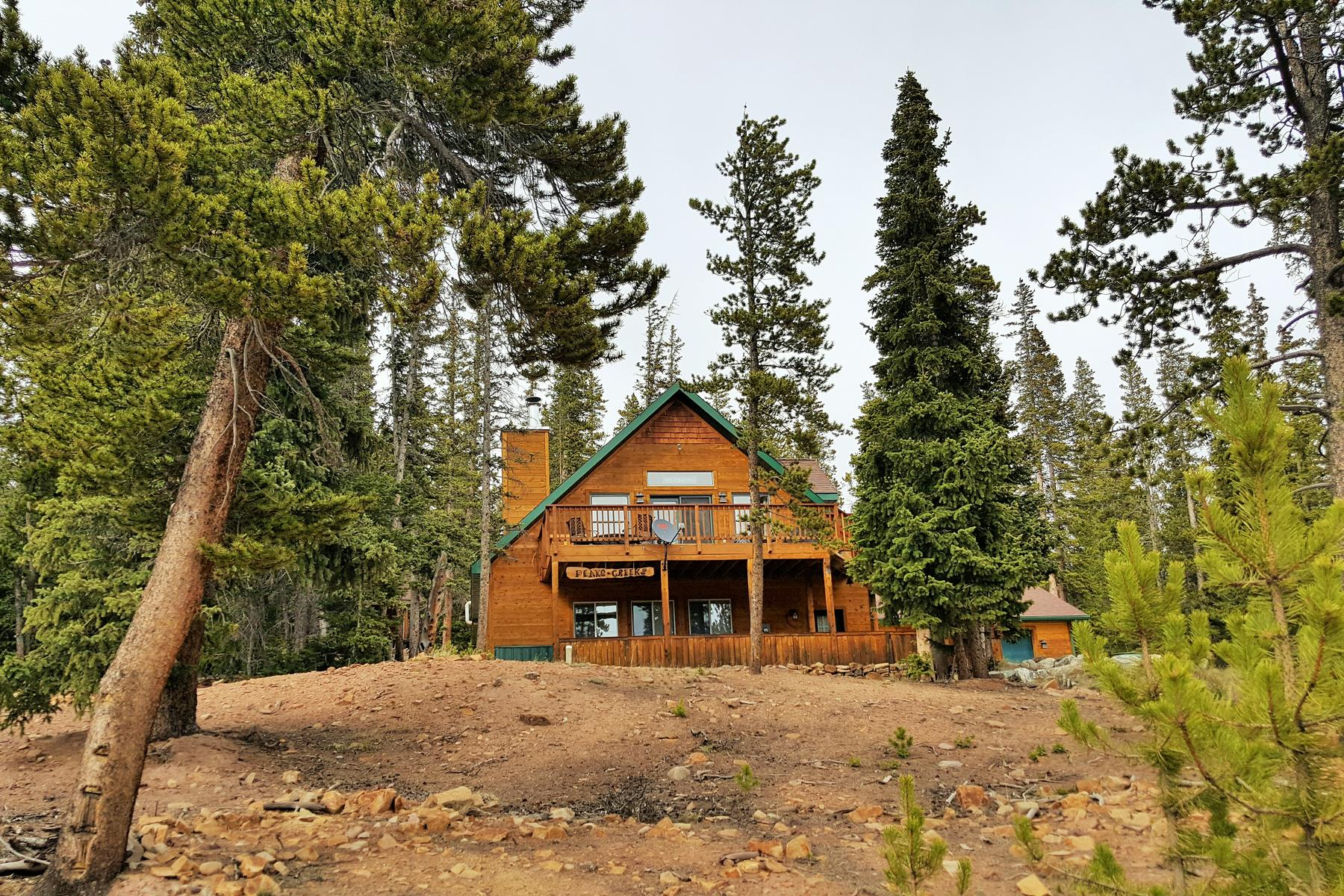 Single Family Home for Active at A Nature Lover's Paradise 3253 CO Road 14A Fairplay, Colorado 80440 United States