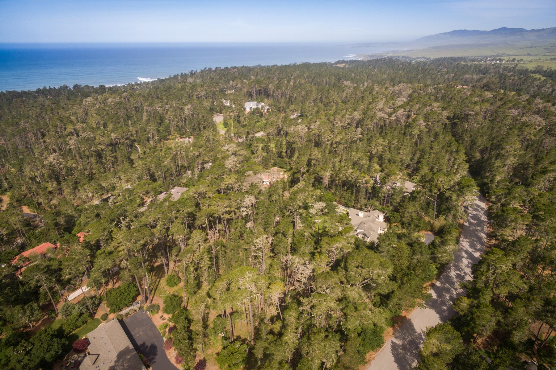 Terreno para Venda às Cambria Parcel Near Ocean 6460 Cambria Pines Rd Cambria, Califórnia, 93428 Estados Unidos