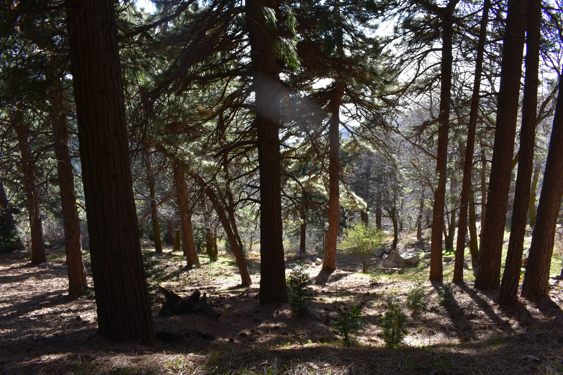 Land for Sale at Crestline Peak Circle Crestline, California 92322 United States