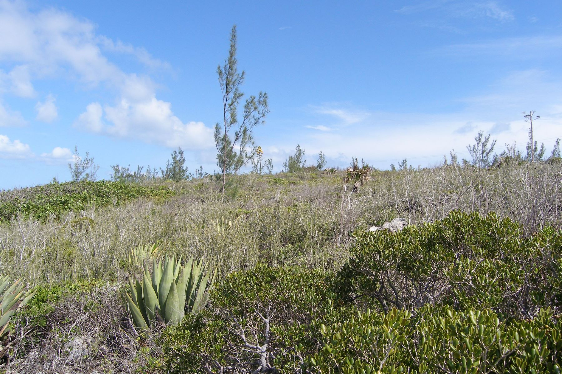 Additional photo for property listing at Two Residential Lots Rainbow Bay, Eleuthera Bahamas