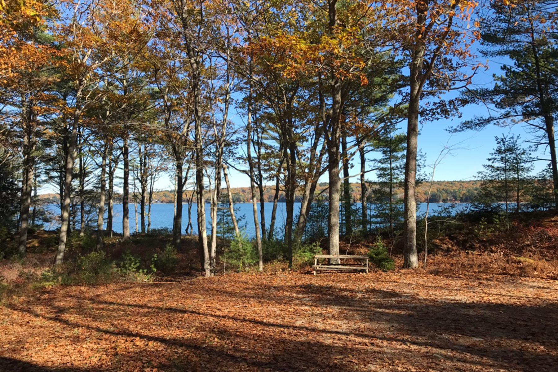 Land for Sale at 0 Lois Lane 0 Lois Lane Westport Island, Maine 04578 United States