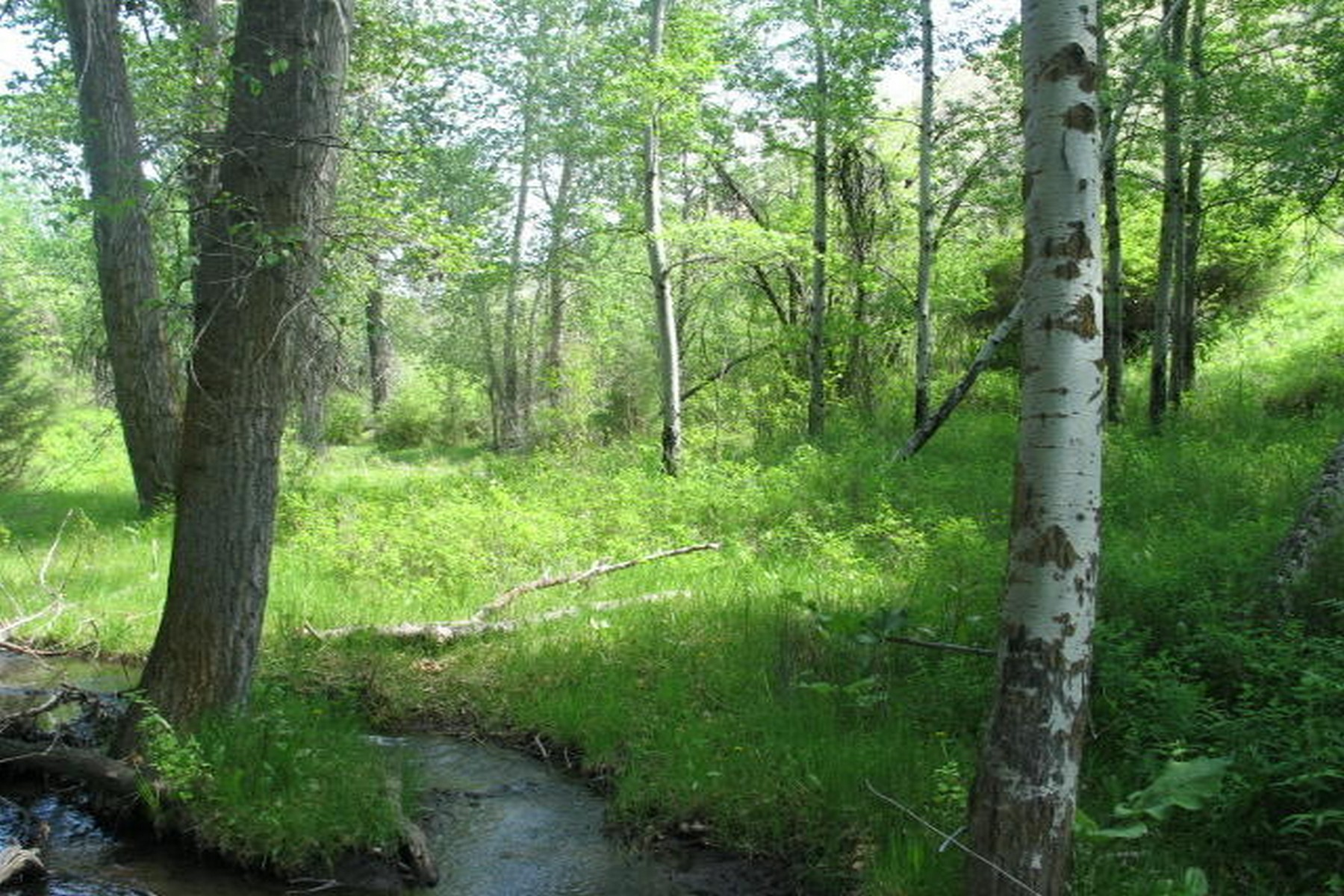 Land for Sale at 3284 Quiet Place Stevensville, Montana 59870 United States