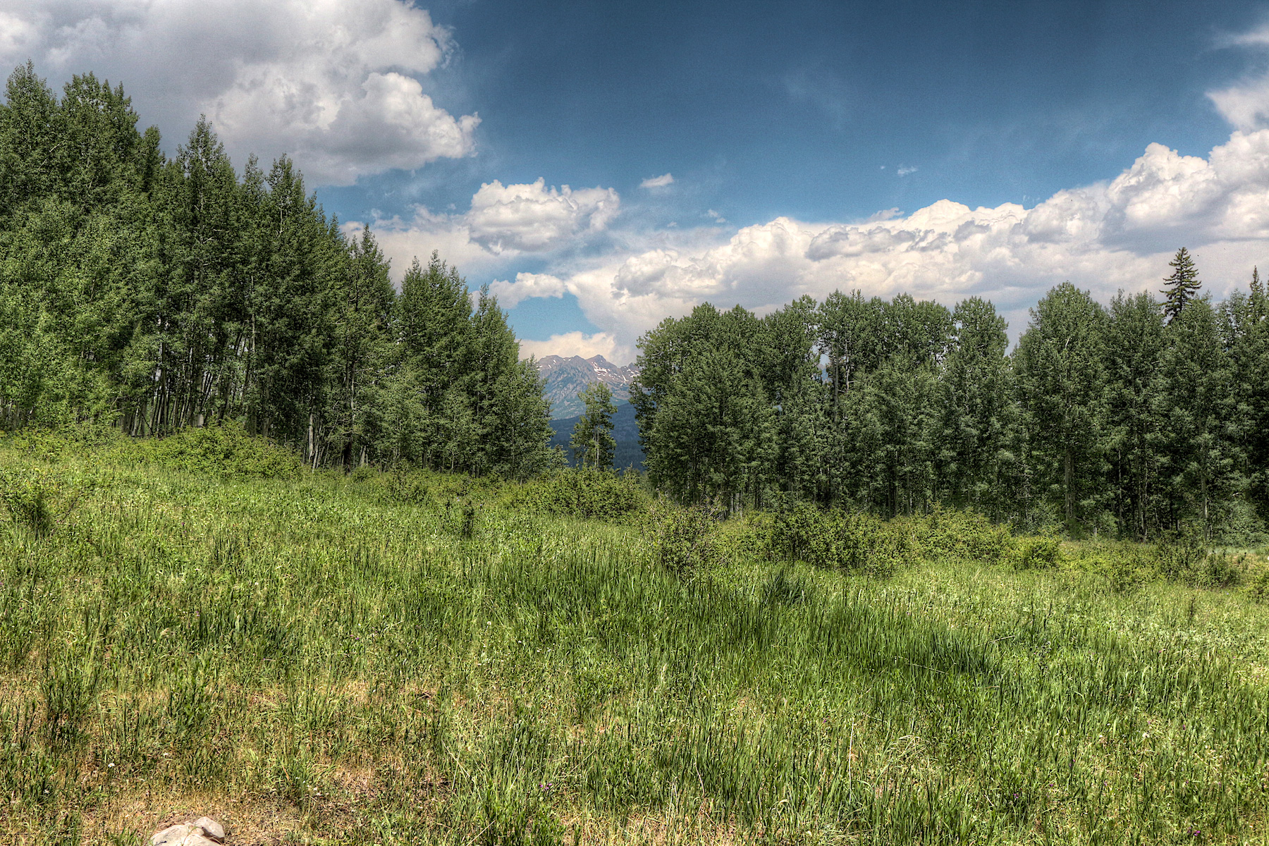 Additional photo for property listing at TBD Wilshire Drive TBD Wilshire Drive Durango, Colorado 81301 United States