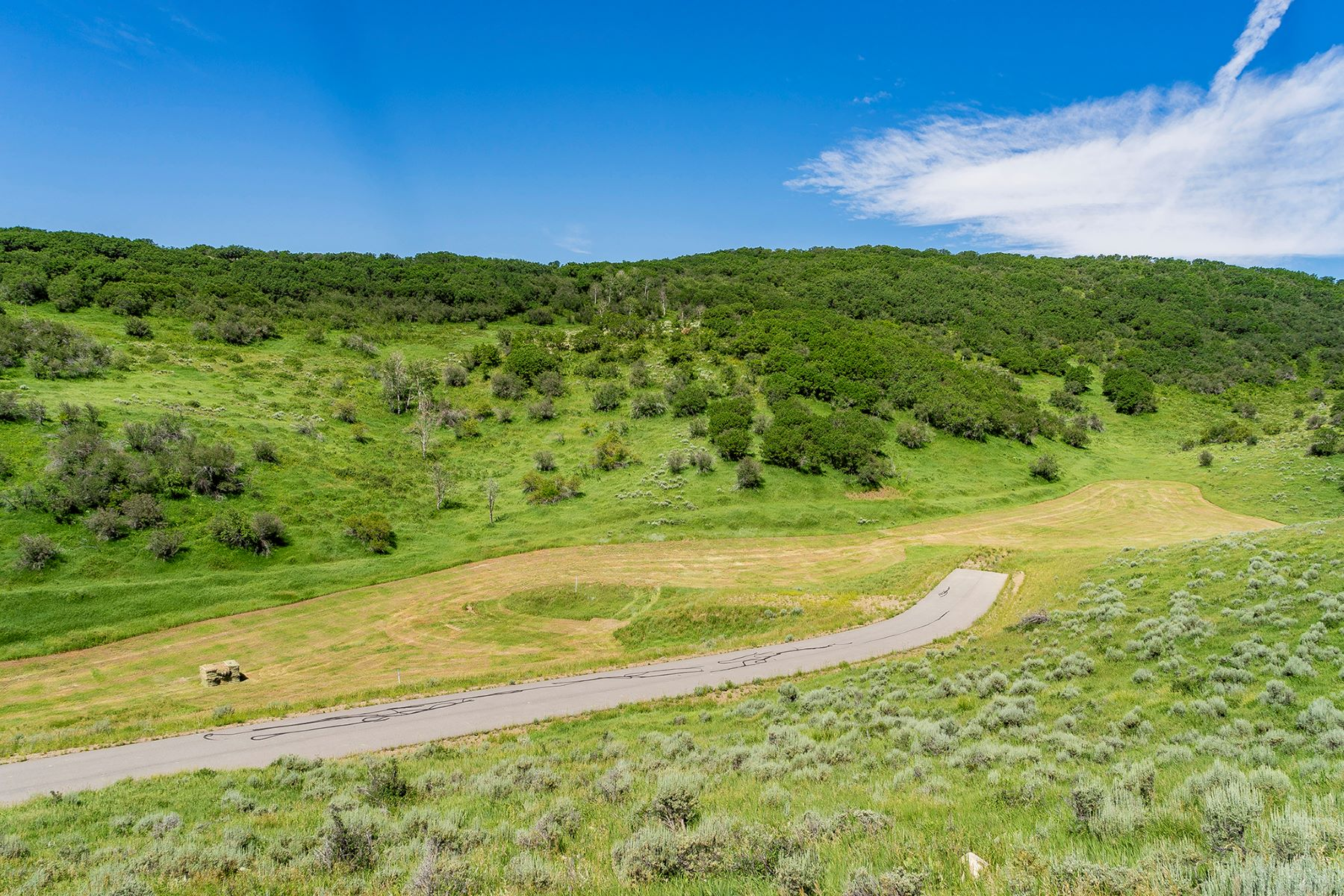 Additional photo for property listing at Saddle Ridge Ranch 39125 Thompson Ln Steamboat Springs, Colorado 80487 United States