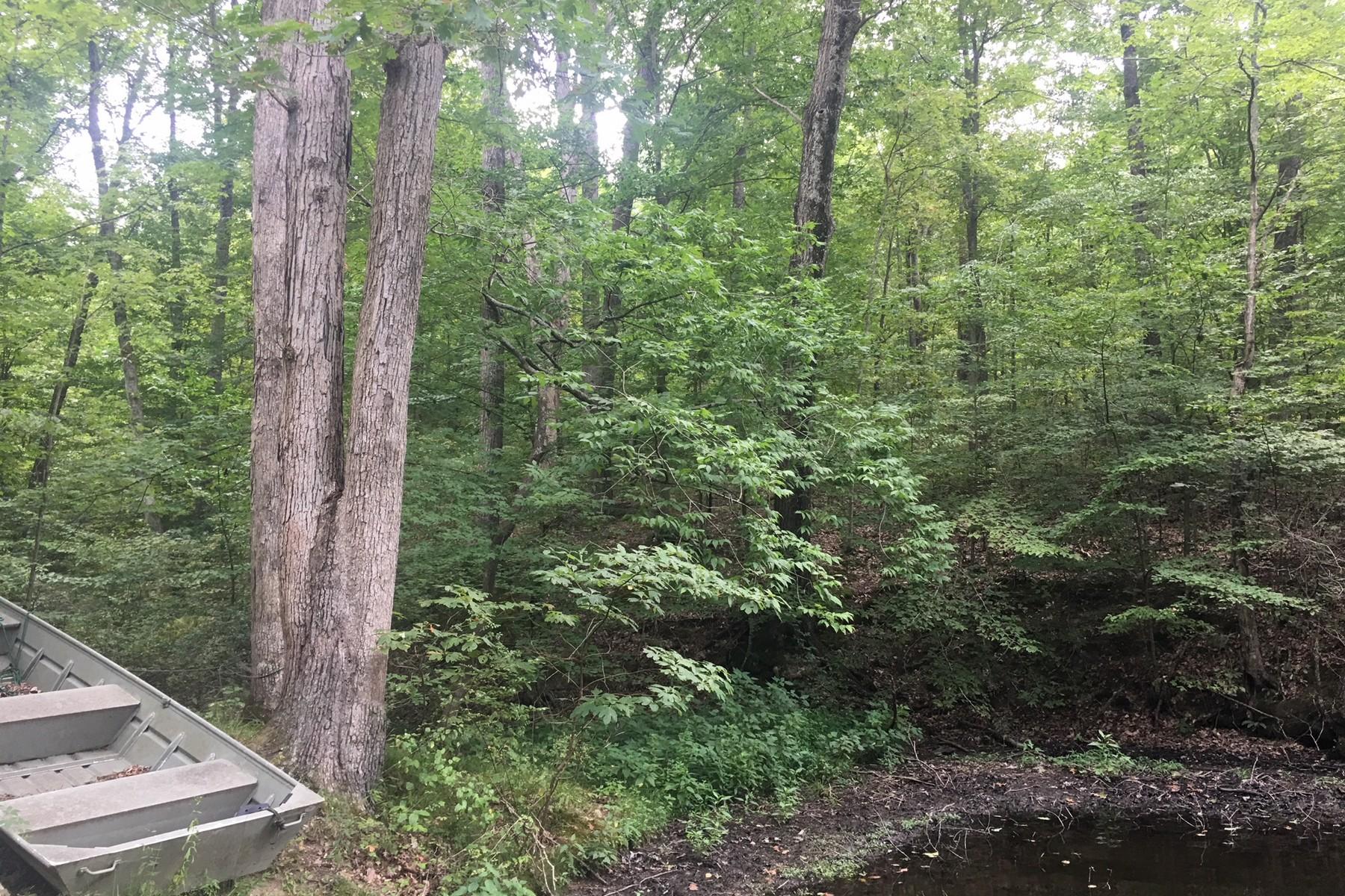 Additional photo for property listing at Beautiful Acreage in Nashville 0 Miller Road Nashville, Indiana 47448 United States