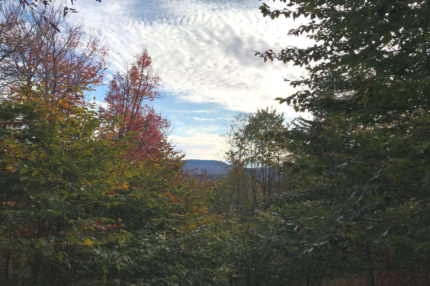 Land for Sale at Panoramic Mountain Views 9155 NYS Route 30 Blue Mountain Lake, New York 12812 United States