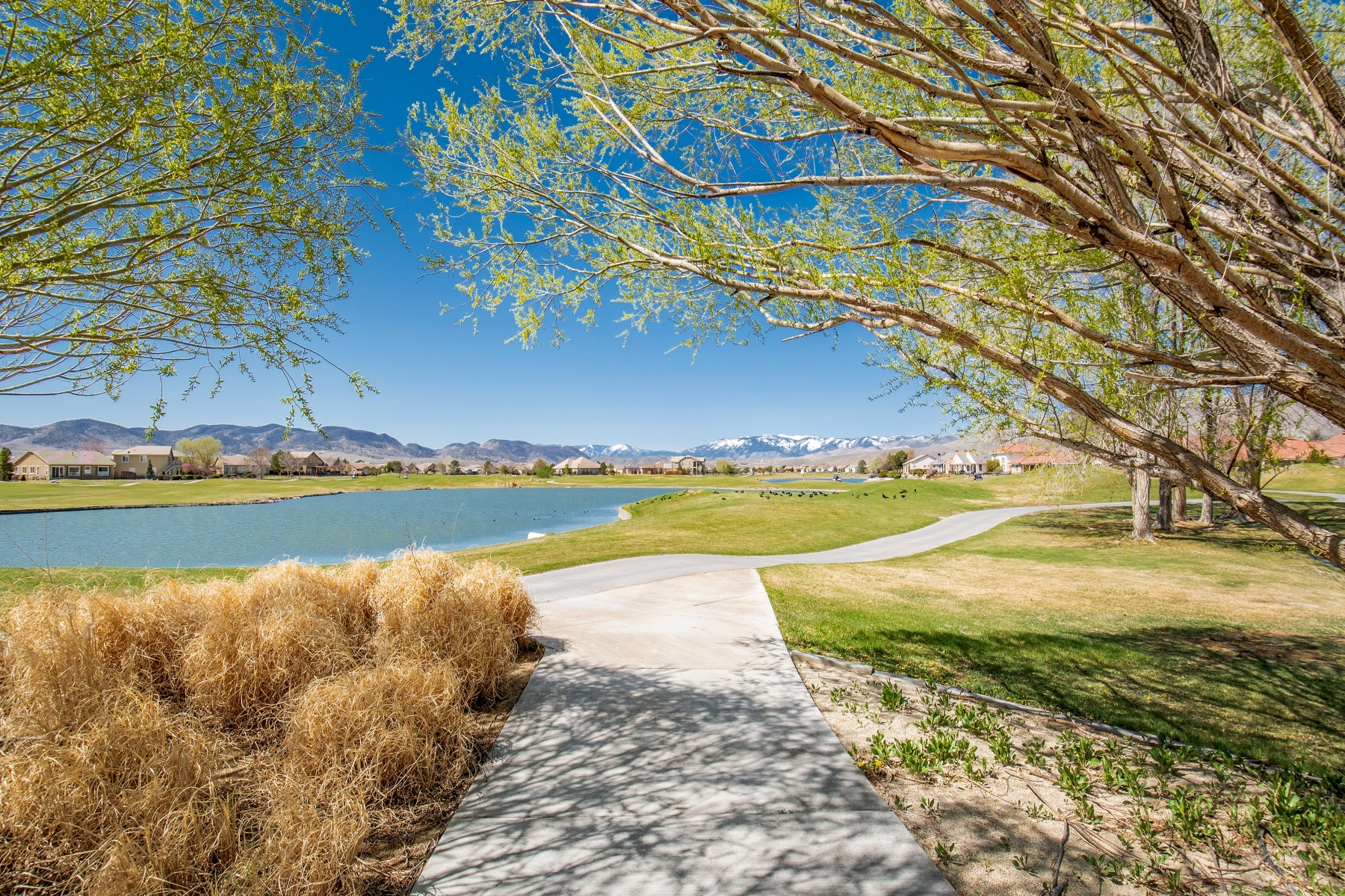 Additional photo for property listing at 366 Bayhill Circle, Dayton, Nevada 366 Bayhill Circle Dayton, Nevada 89403 United States