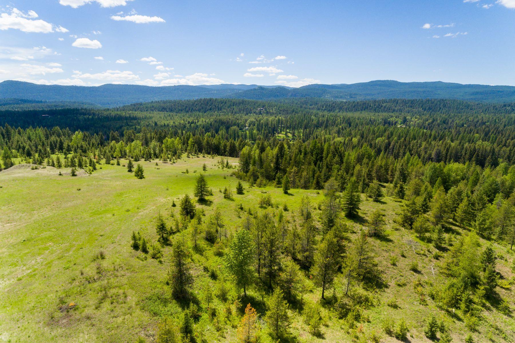 Additional photo for property listing at  Whitefish, Montana 59937 Stati Uniti